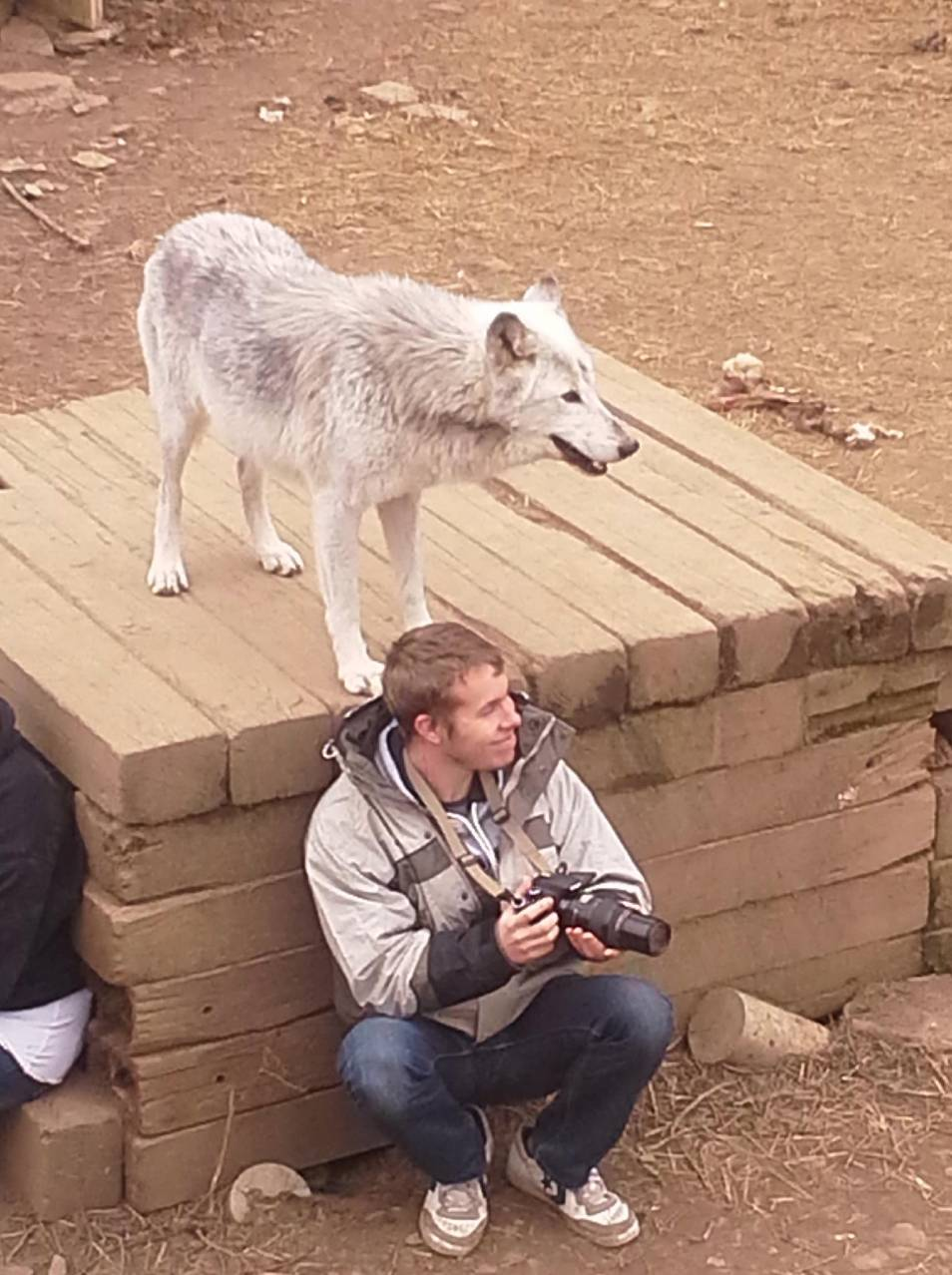 E.J. Horstman is with a wolf at the Wolf Creek Habitat in Brookville, Indiana.