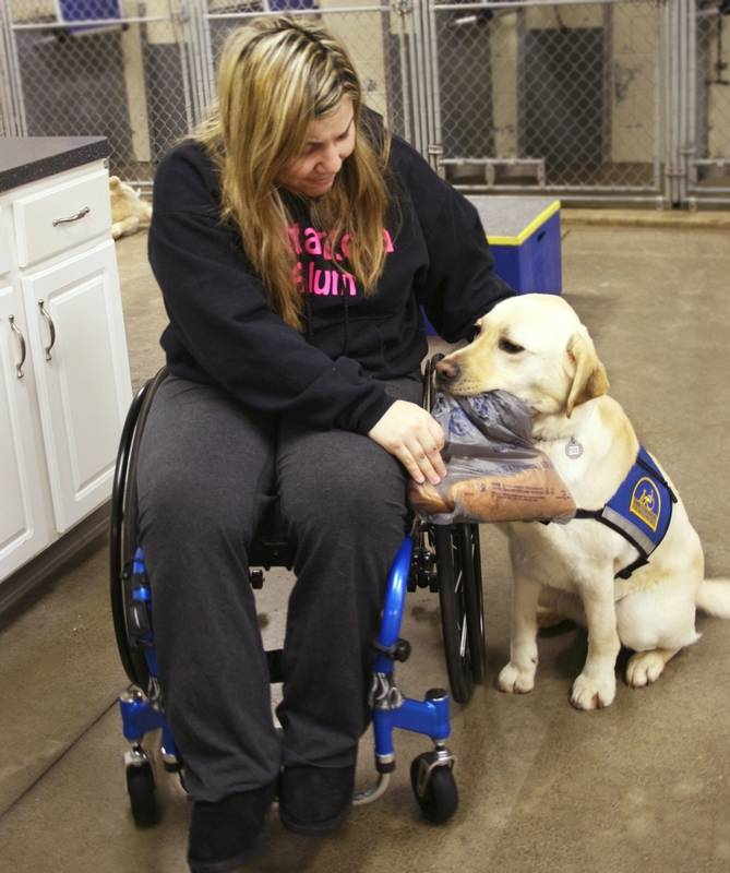 Service Dog Training School Ohio