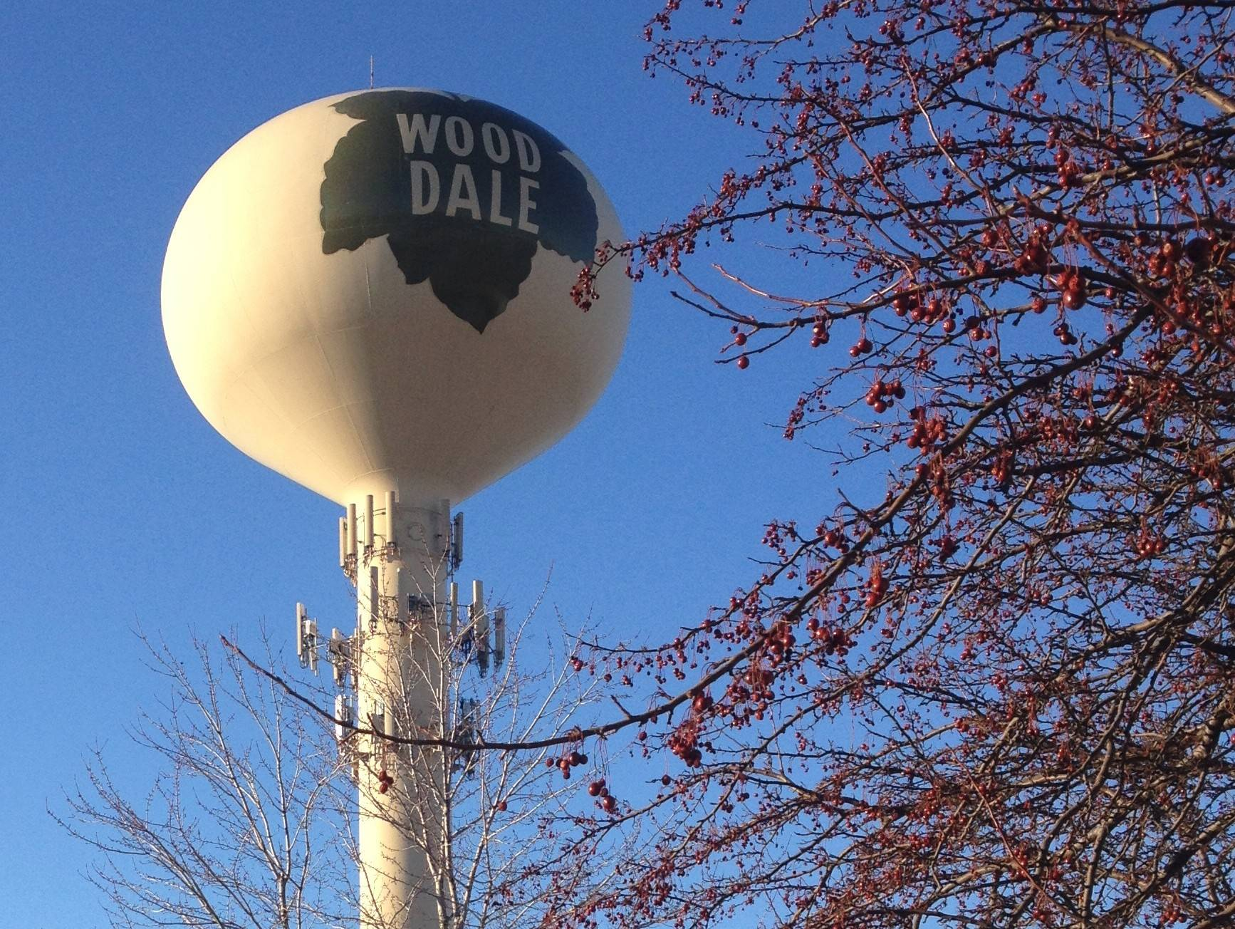 A Wood Dale water tower stands in the office corridor on the north side of town near Devon and Wood Dale Road.