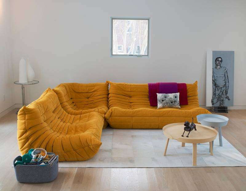 Duo designed their house around wife 39 s artist studio for Ligne roset canape