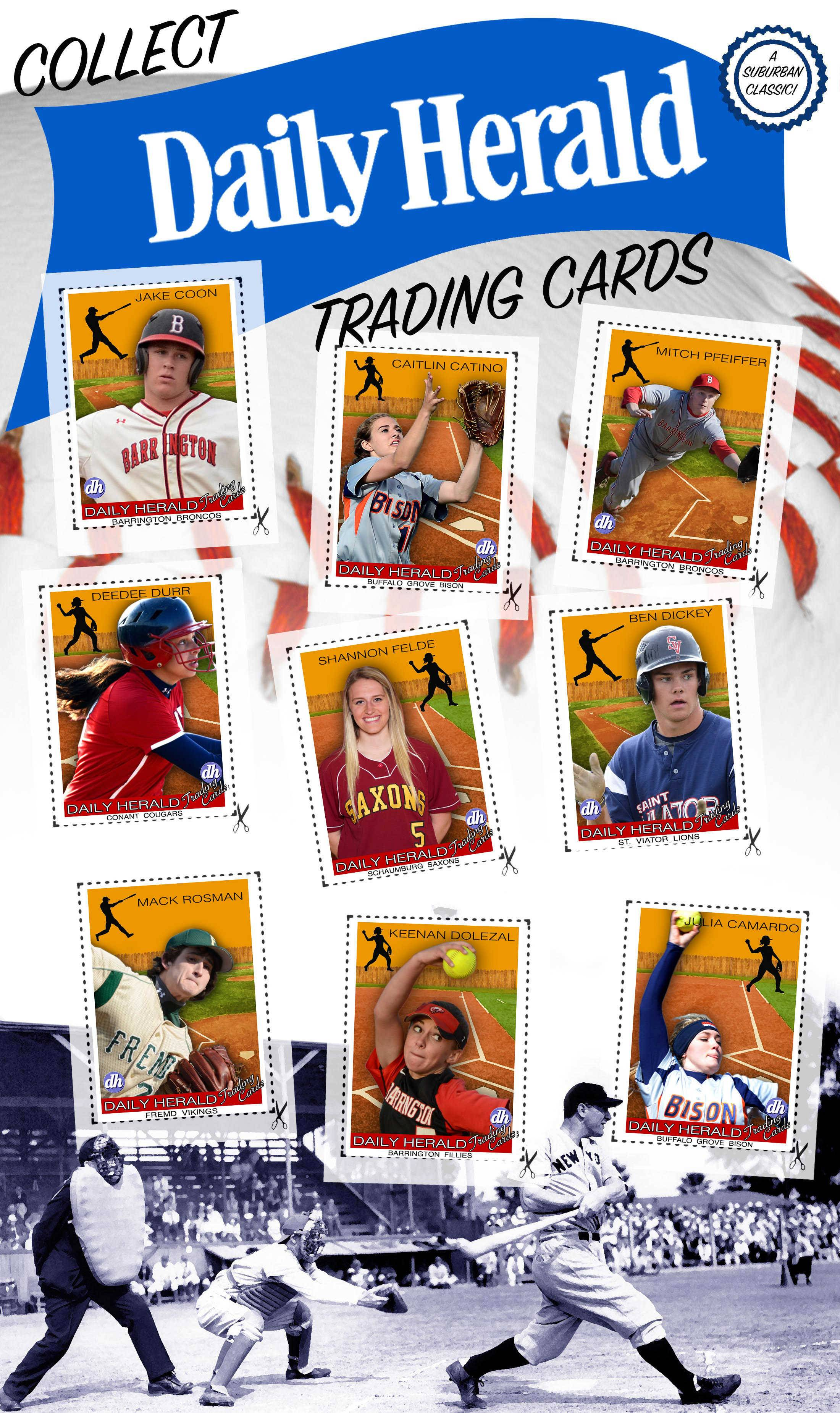 Daily Herald trading cards are back for 2015, highlighting returning baseball and softball players. Here, players in the northwest suburbs.