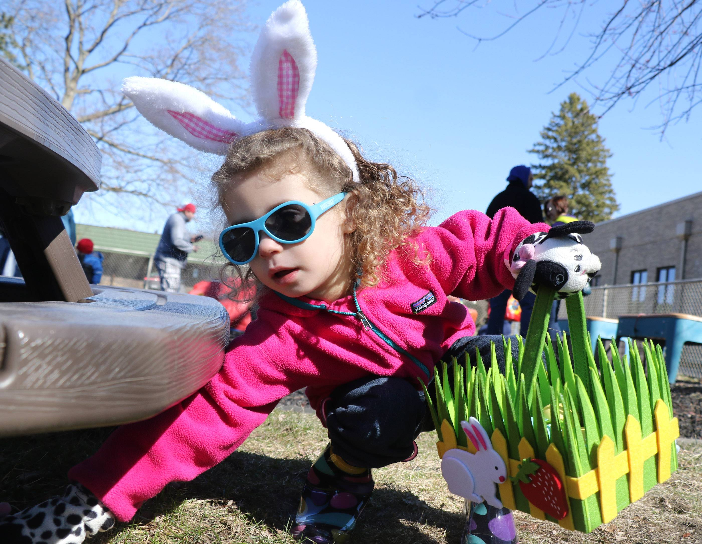 Hailey Giarraffa, 3, of Buffalo Grove, reaches for plastic eggs hidden under a bench at Nutphree's Bakery's first food free Easter egg hunt for children with food allergies at Trinity United Methodist Church on Saturday in Mount Prospect. Giarraffa is allergic to dairy, eggs, peanuts and other food items.
