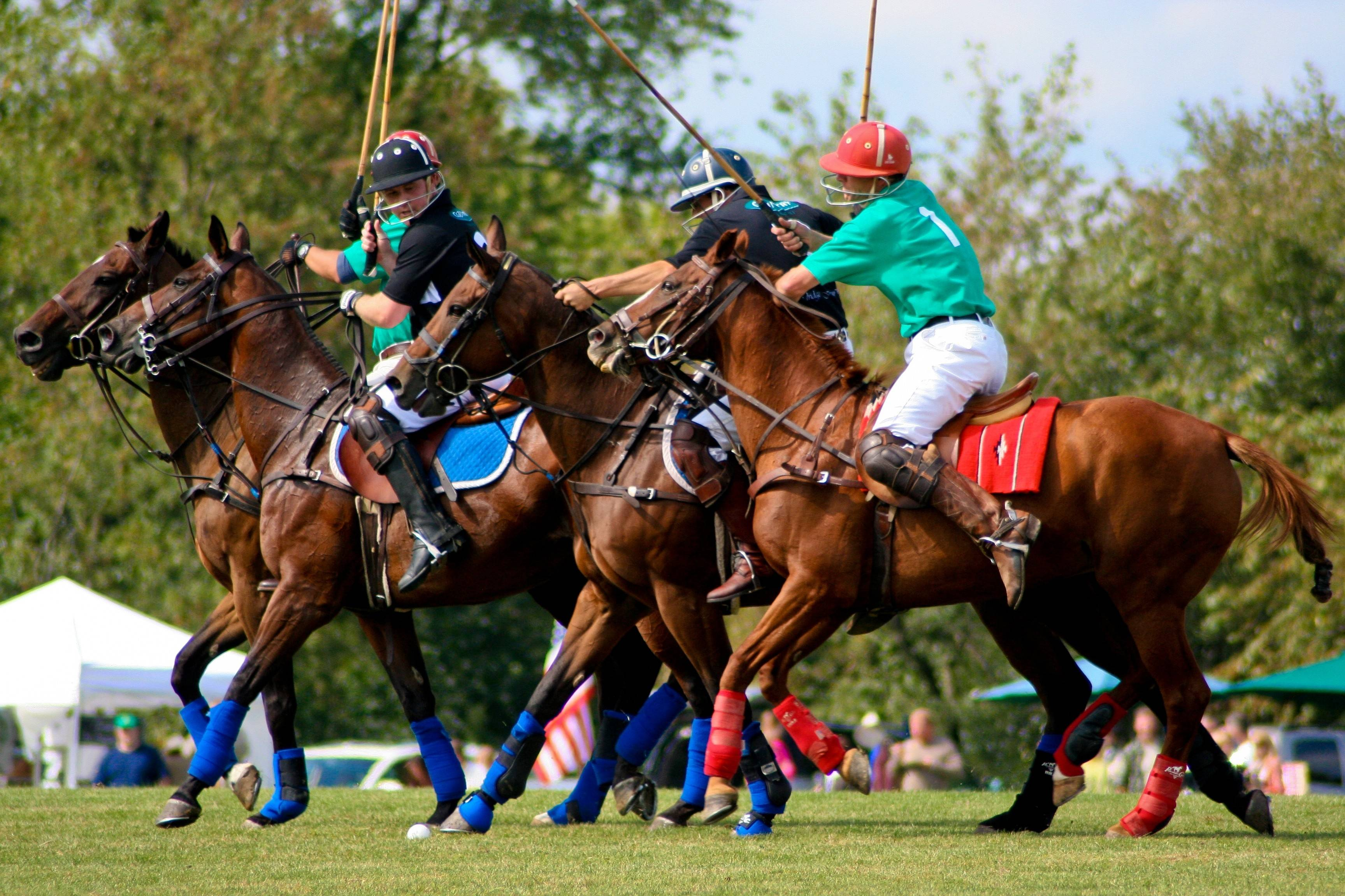 Barrington Hills polo competition will continue, after all
