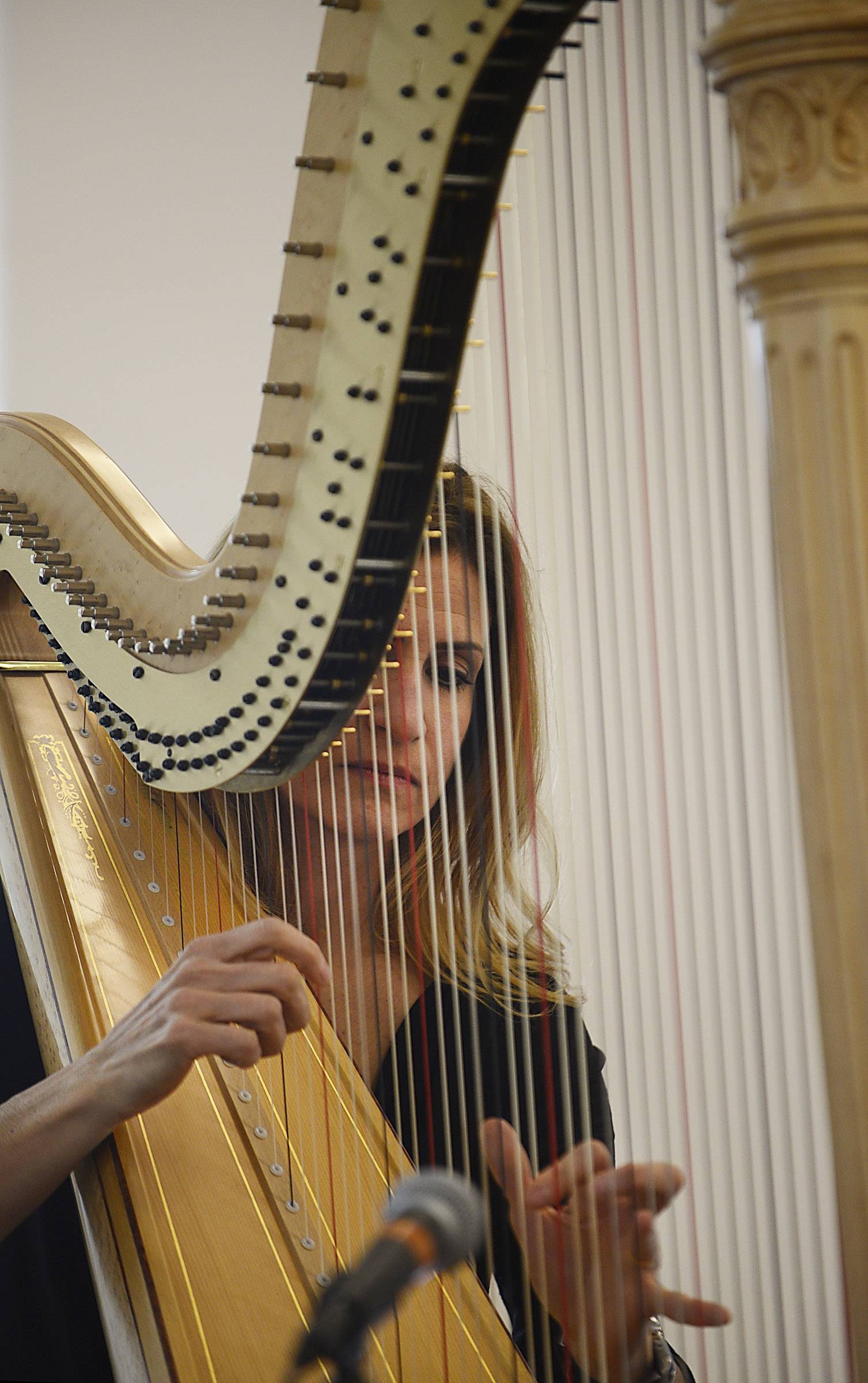Laura Fako Utley plays the harp Sunday at the 16th annual Kaneland Community Fine Arts Festival at Kaneland High School in Maple Park. The Elmhurst native regularly performs at Edward Hospital in Naperville as part the its Healing Arts program.