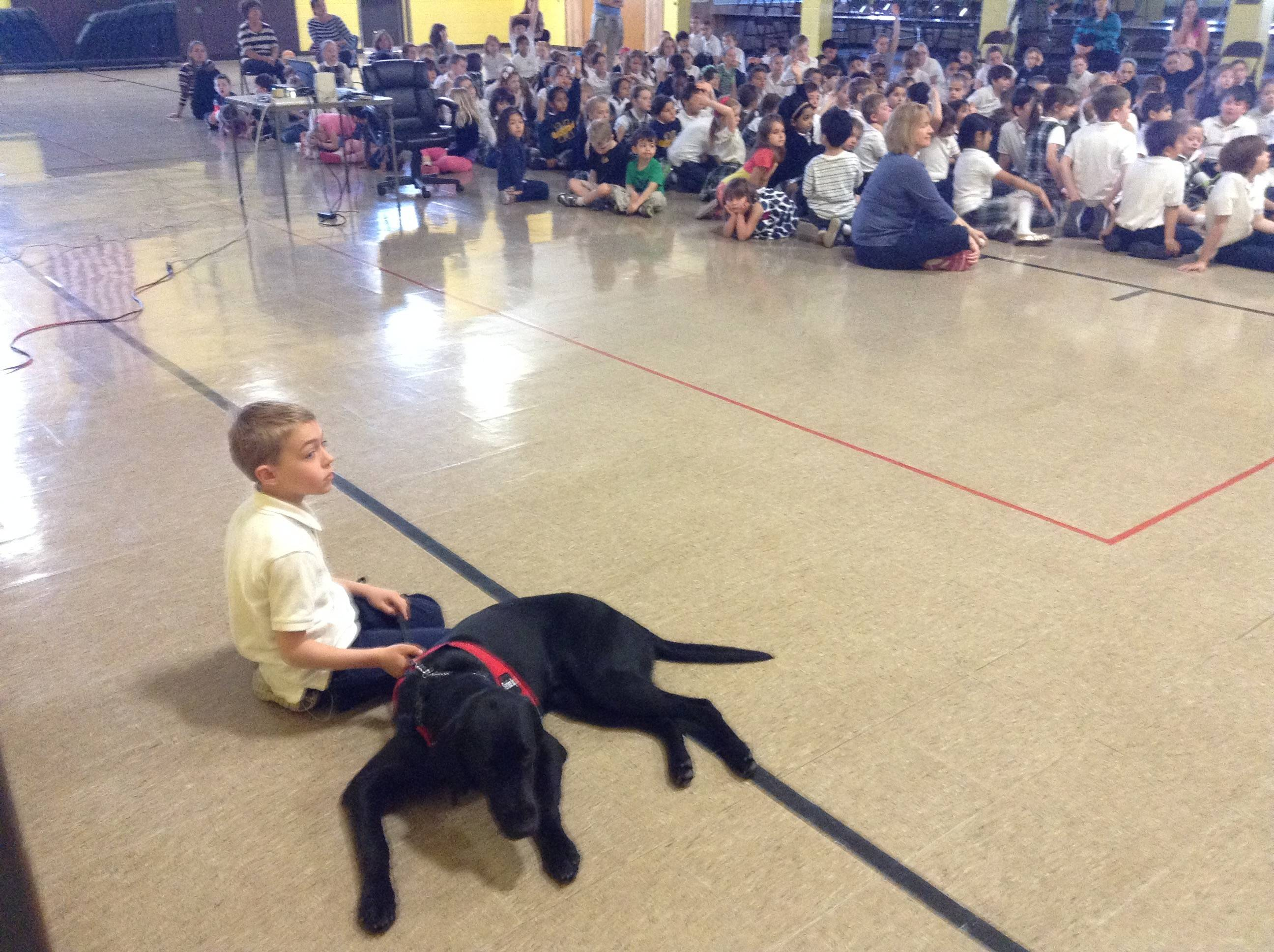 Aidan Gorman, 8, is accompanied by his new diabetes-alert dog Friday at St. Mary of the Annunciation Catholic School in Fremont Township.