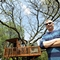 $195-a-night treehouse might prompt new rules in Schaumburg
