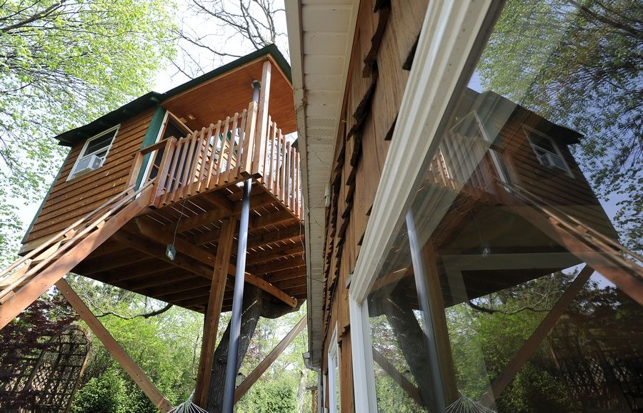 The Cook County assessor's office Wednesday said further study is needed to determine if Schaumburg resident Dan Alexander's luxury treehouse should be taxed as either a second residence or a commercial property.