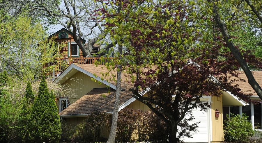 Is this a photo of one house or two? The Cook County assessor's office is still researching whether Dan Alexander's backyard treehouse constitutes a second residence on the property.