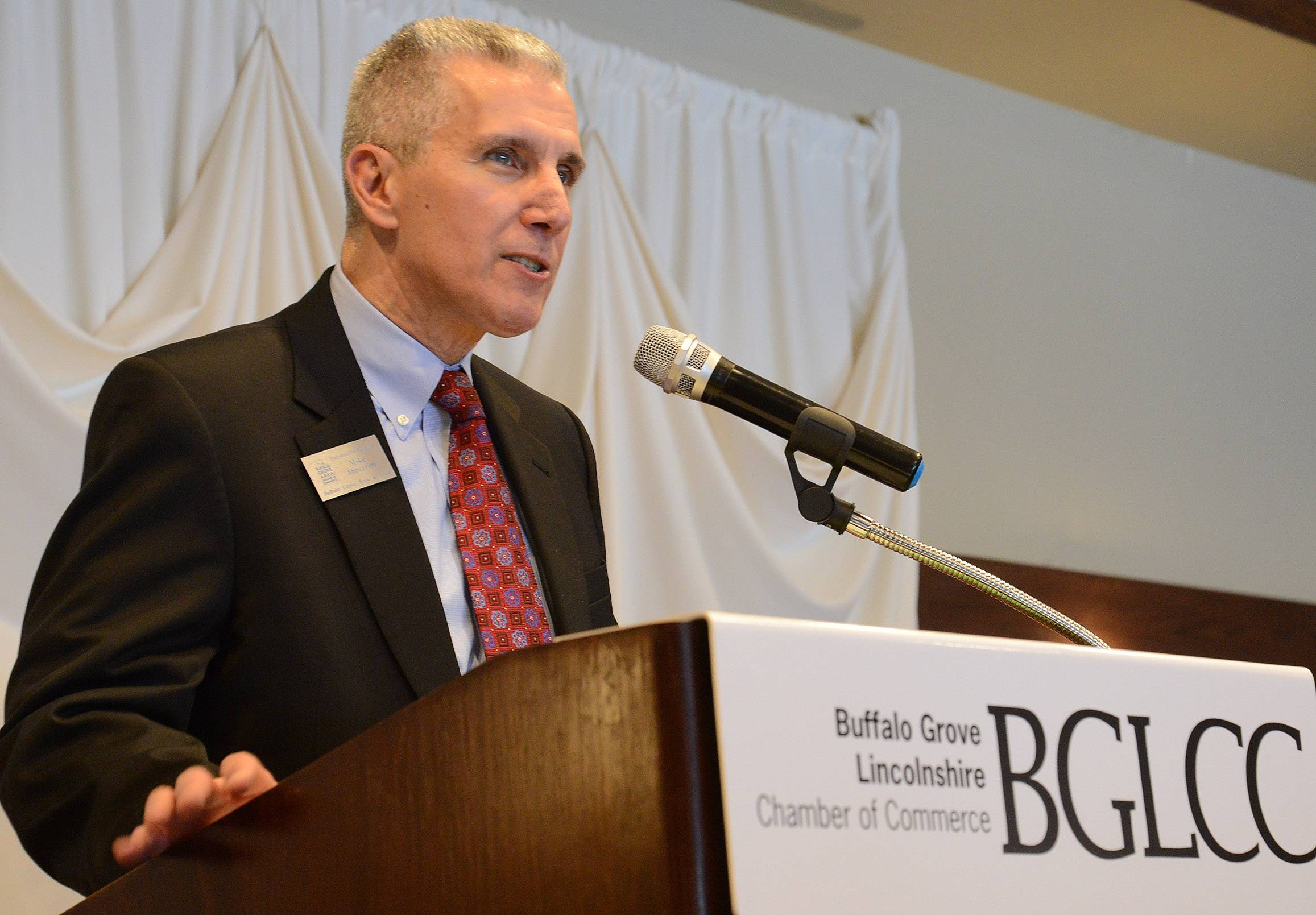Michael Abruzzini, president of the Buffalo Grove Lincolnshire Chamber of Commerce and vice president of the Buffalo Grove Bank and Trust, will chair a new Buffalo Grove Economic Development Strategic Plan Steering Committee.
