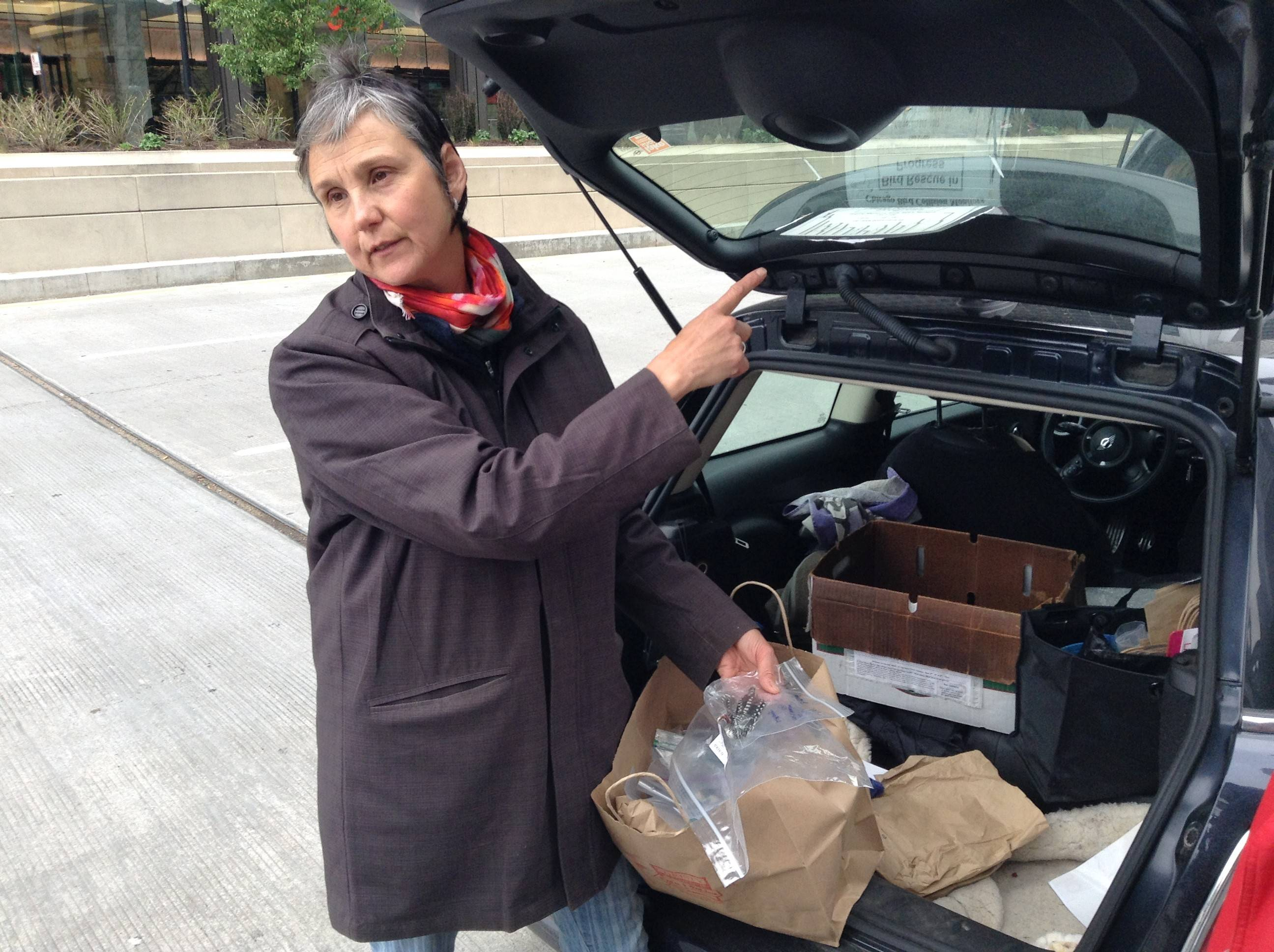 Volunteer Marina Post rescued about four live birds and recovered six dead birds during a morning earlier this month in downtown Chicago.