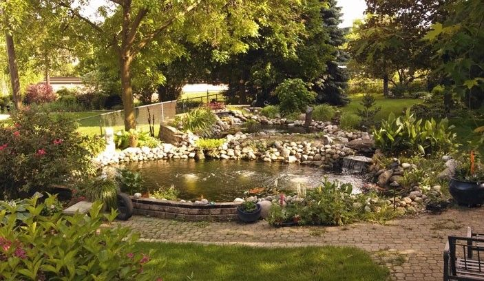 Charlene and Ray Cebulski have a two-level pond in the backyard of their Lisle home. They keep koi in the lower level and are active among koi pond keepers through the Midwest Pond and Koi Society.