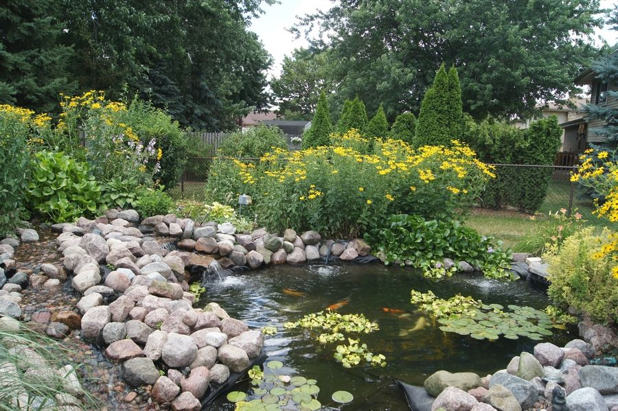 Those interested in or curious about koi ponds can check out local examples in July during the Midwest Pond and Koi Society's Pond Tour through DuPage and Cook counties.