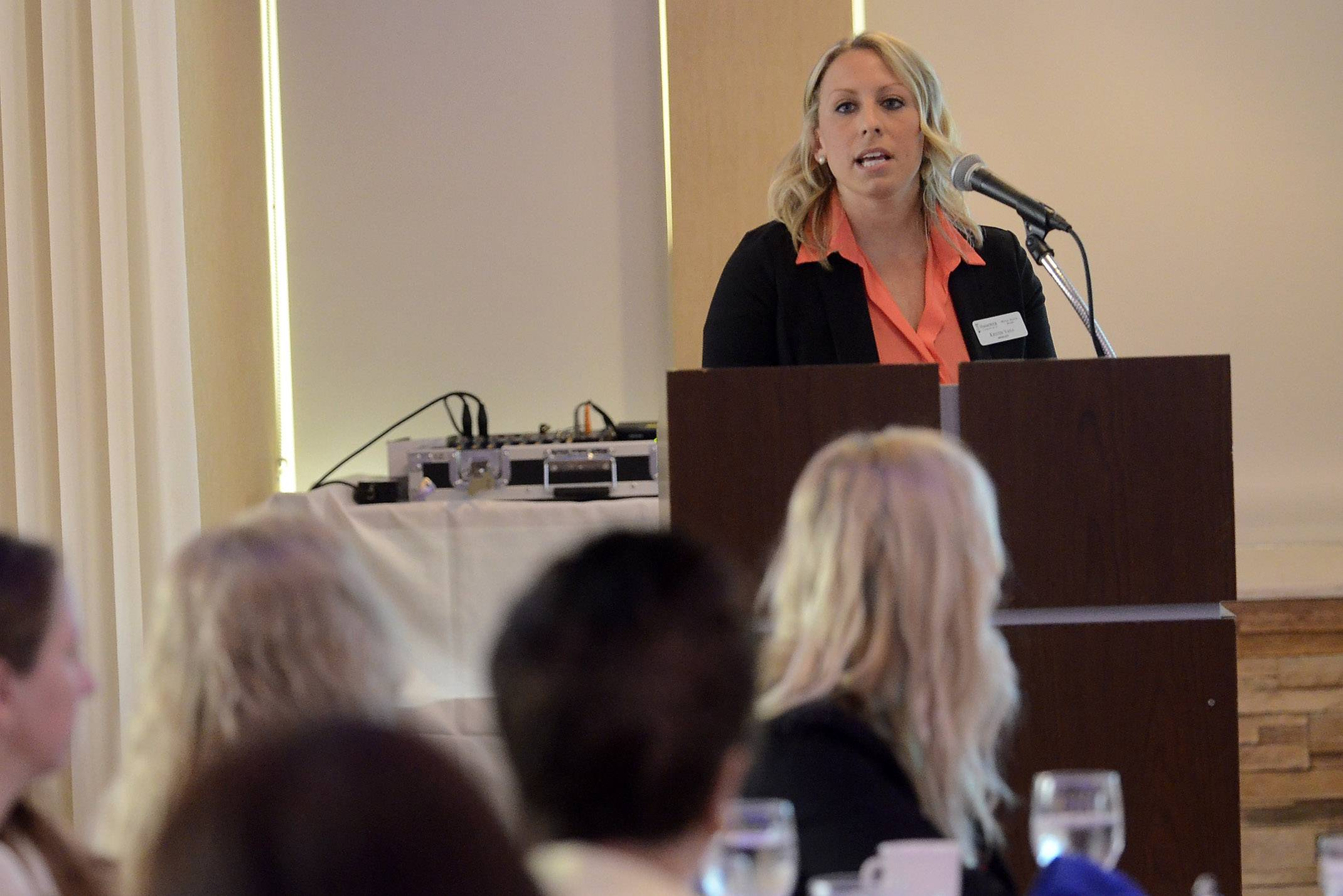 Kristin Vana, manager of the Hanover Township Mental Health Board, discussed the challenges the agency faces during an appearance Tuesday before the Schaumburg Business Association.