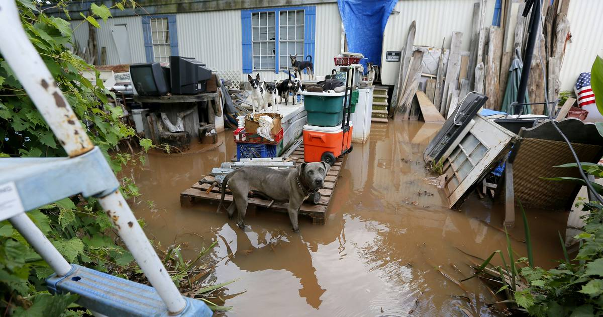 Images Red River Flooding Causes Nightmare In Louisiana