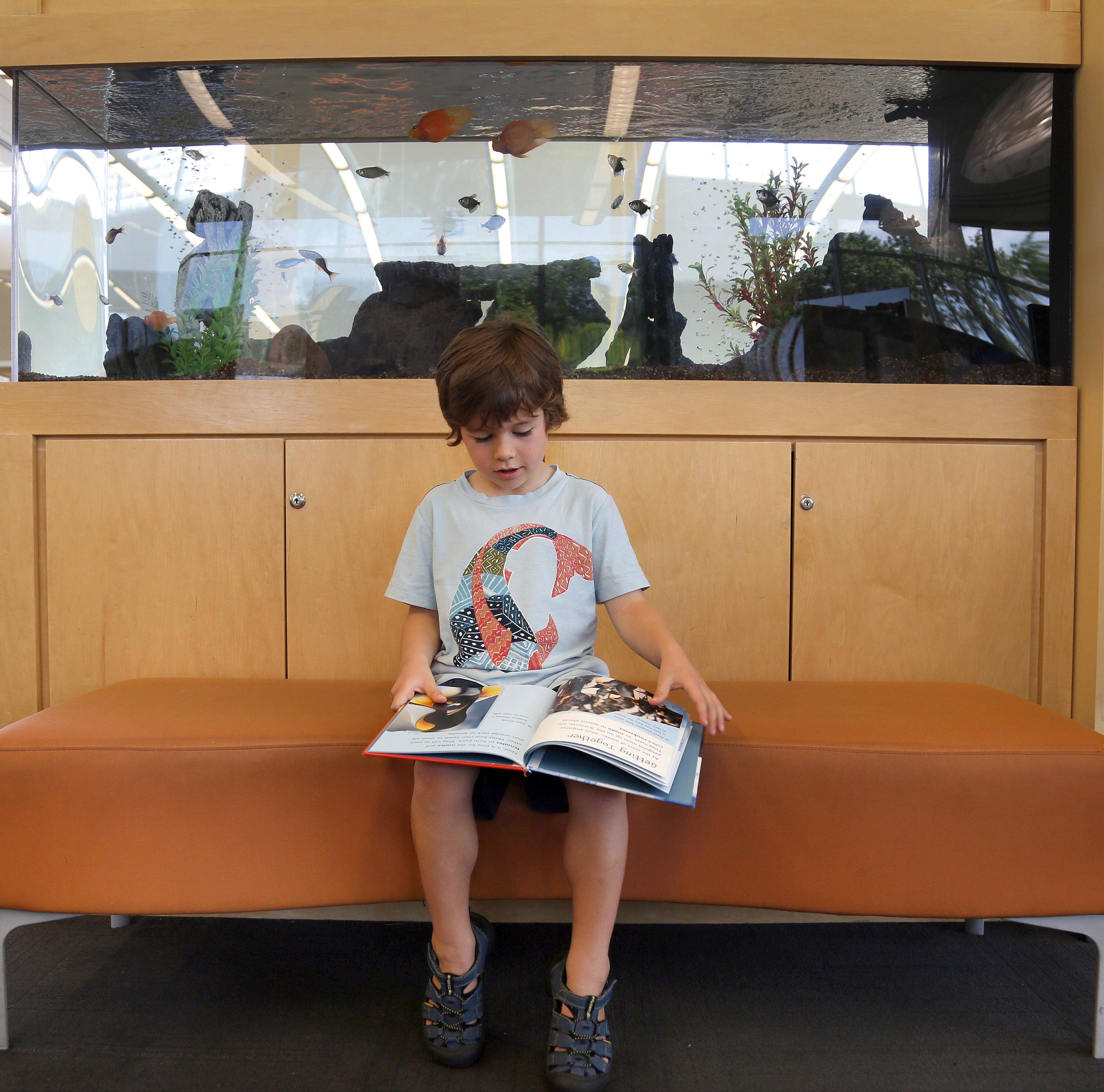 Will Neff reads near the fish tank at the Aspen Drive Library in Vernon Hills. The library is celebrating its fifth anniversary.