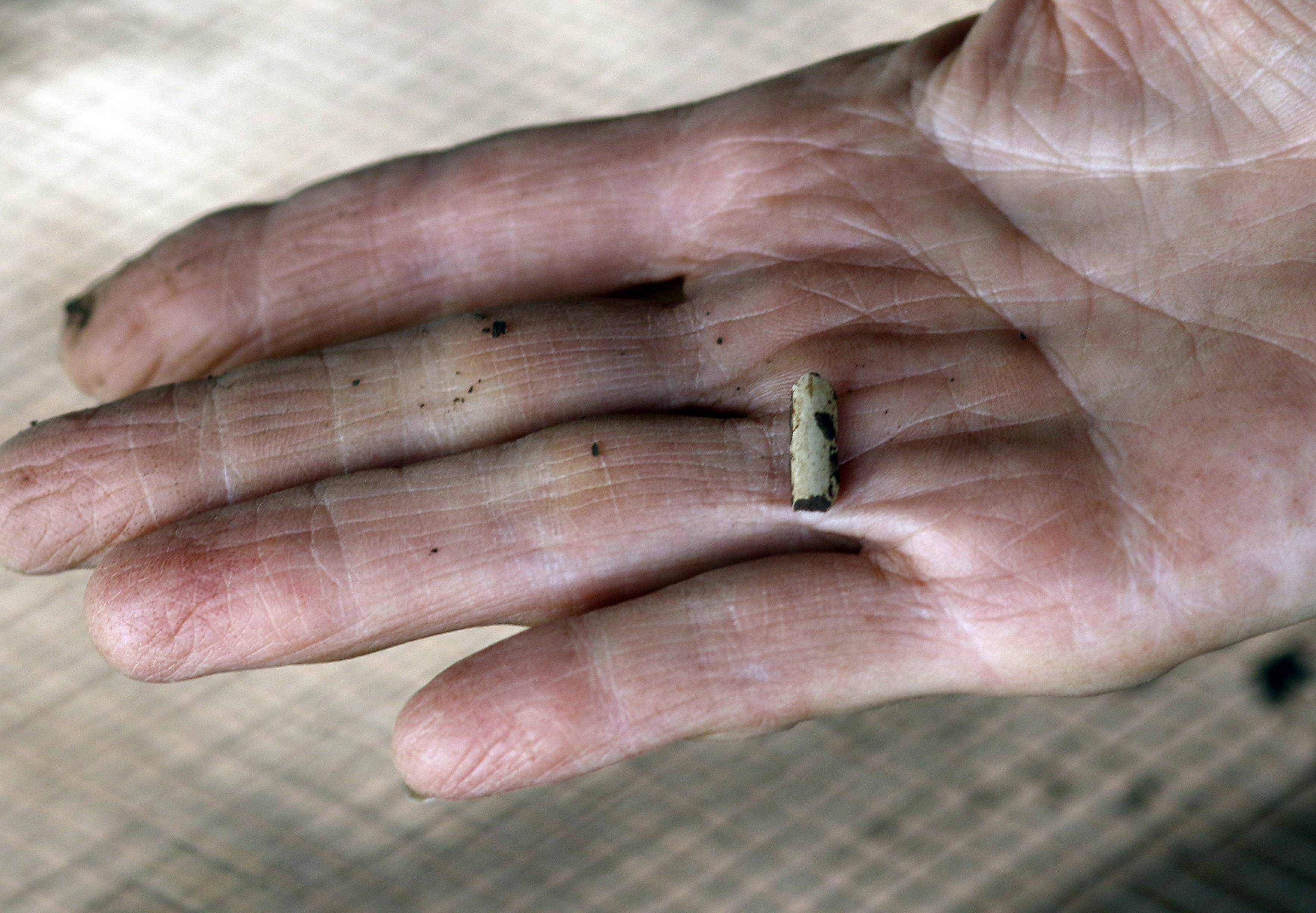 A volunteer holds up a small part of a pipe that was found Wednesday at Garfield Farm in La Fox.