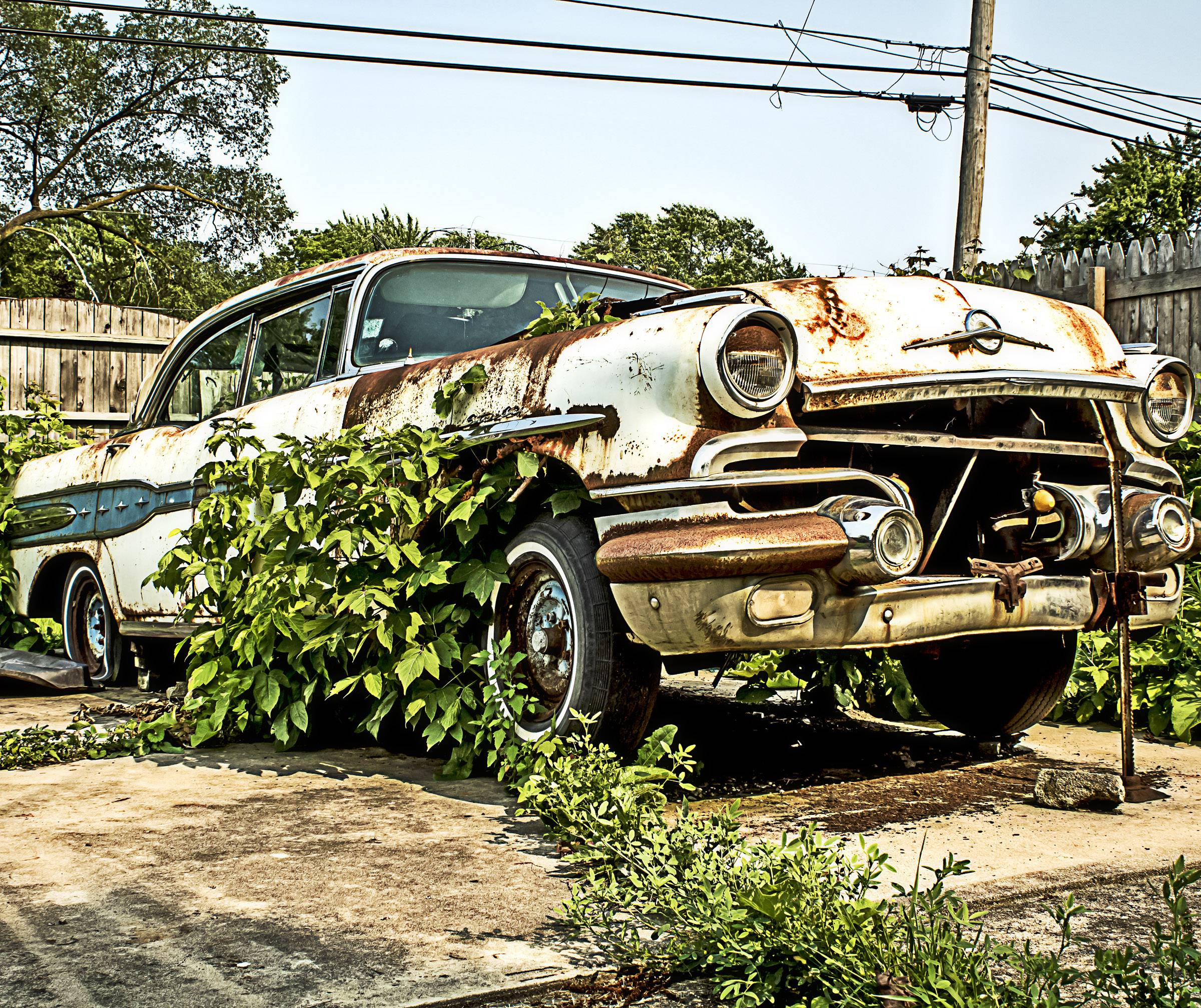 A vintage 1955 Oldsmobile sits in a neighborhood backyard, rusting away and gathering plant life.