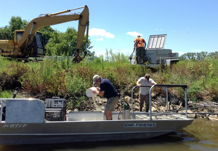 Workers from the Illinois Department of Natural Resources remove sport fish from the Lake County Forest Preserve District's Rasmussen Lake near Antioch.