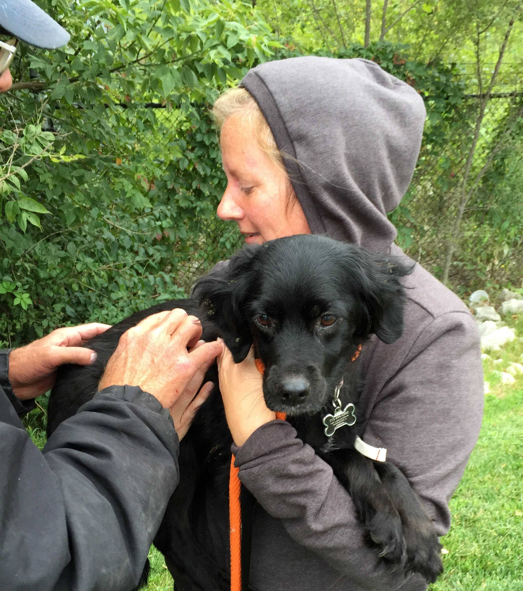 Terri Templin of Algonquin embraces Wrigley, a 12-year-old Brittany spaniel/Labrador retriever mix, that had been missing for 15 days. The dog was the object of a massive, multi-community search that ended happily on Wednesday.