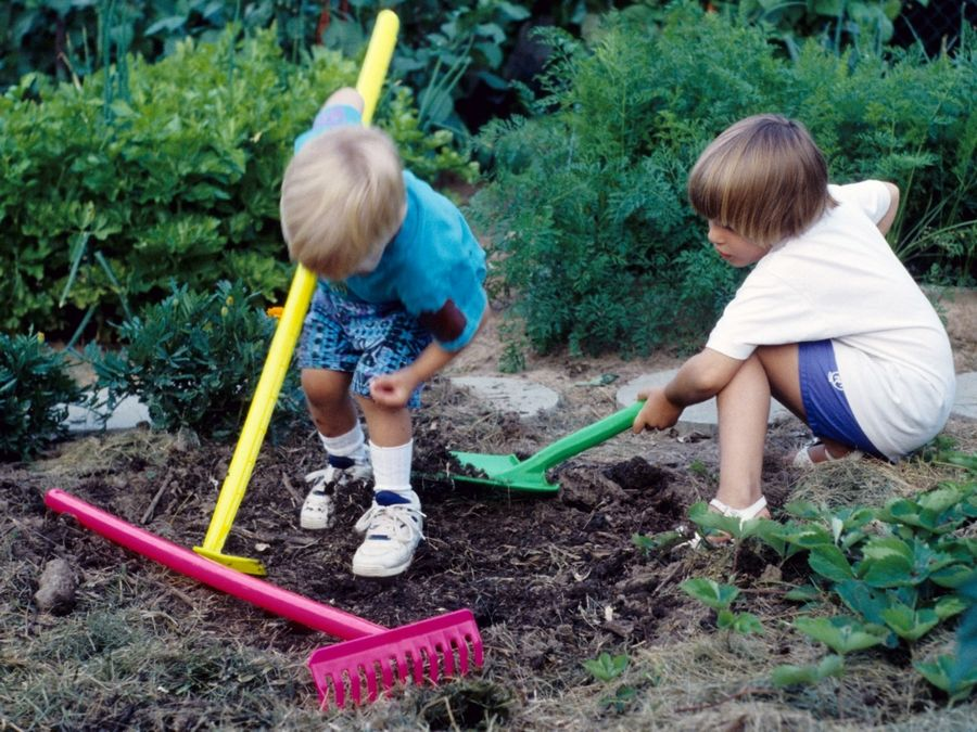 Letting kids play in the dirt, or especially on a farm, may be key to keeping children allergy-free.