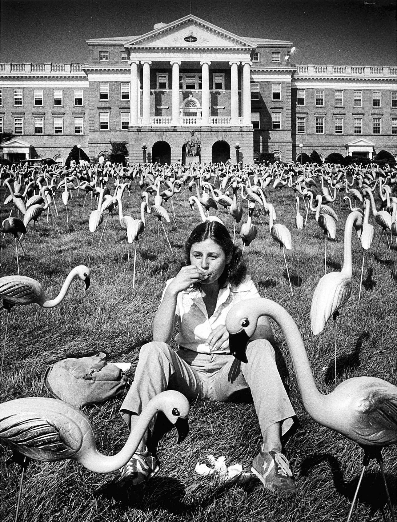 University of Wisconsin-Madison student Joan O'Donnell takes a snack break on Bascom Hill amid a flock of pink plastic flamingos put up as a prank by the Pail and Shovel Party of the Wisconsin Student Association in Madison, Wis.