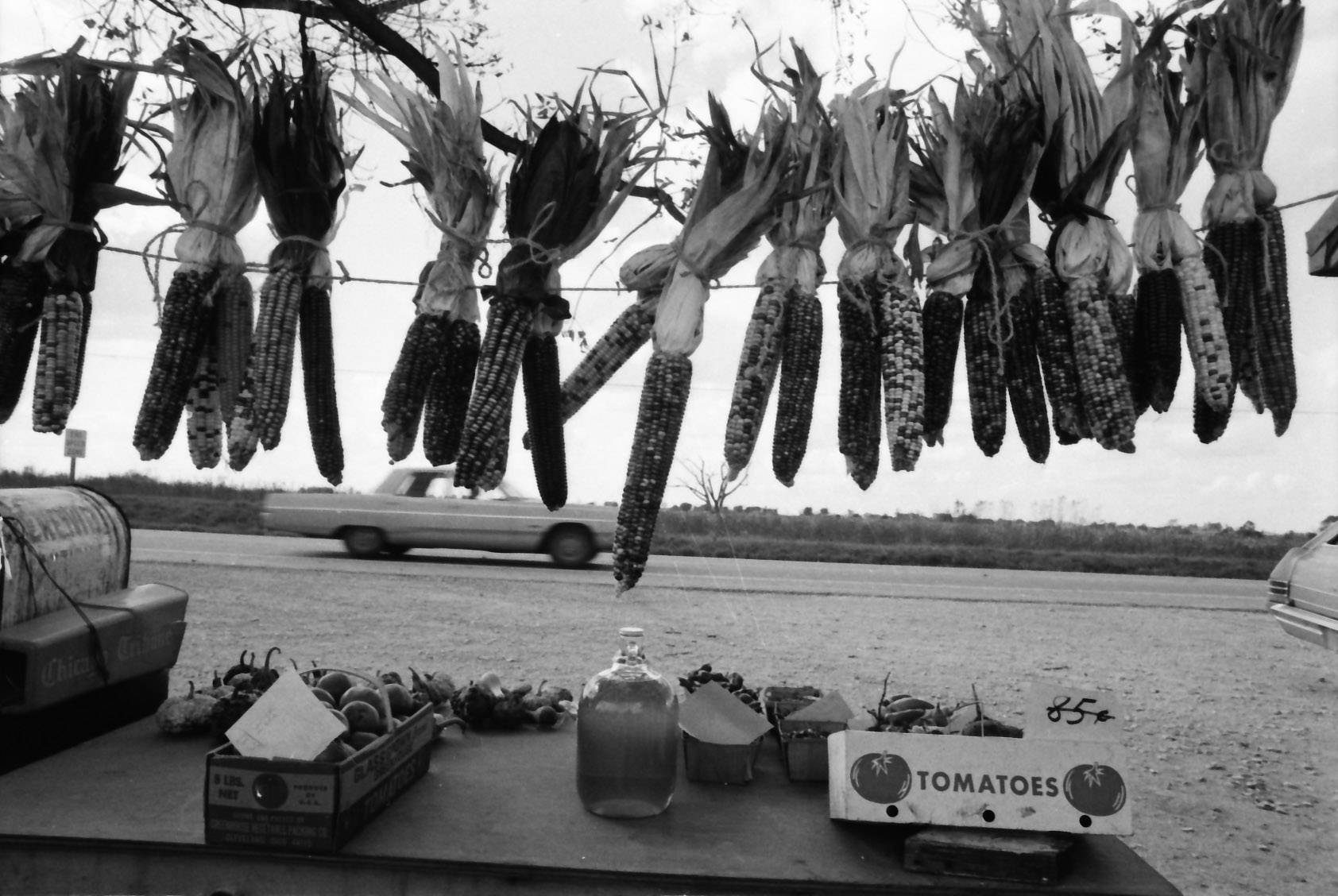 Cars pass by an Elk Grove Village roadside vegetable stand in 1970.