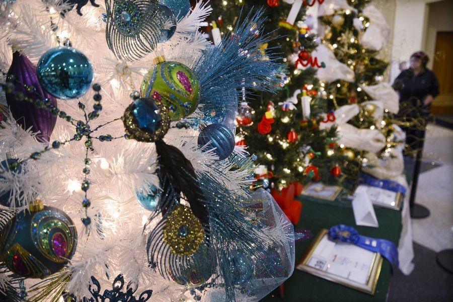 "Join in Ecker Center for Mental Health's annual fundraising event, ""Festival of Trees."" Vote for your favorite decorated tree at Gail Borden Public Library in Elgin from Nov. 2-13. Or get tickets for the Nov. 14 dinner and auction."
