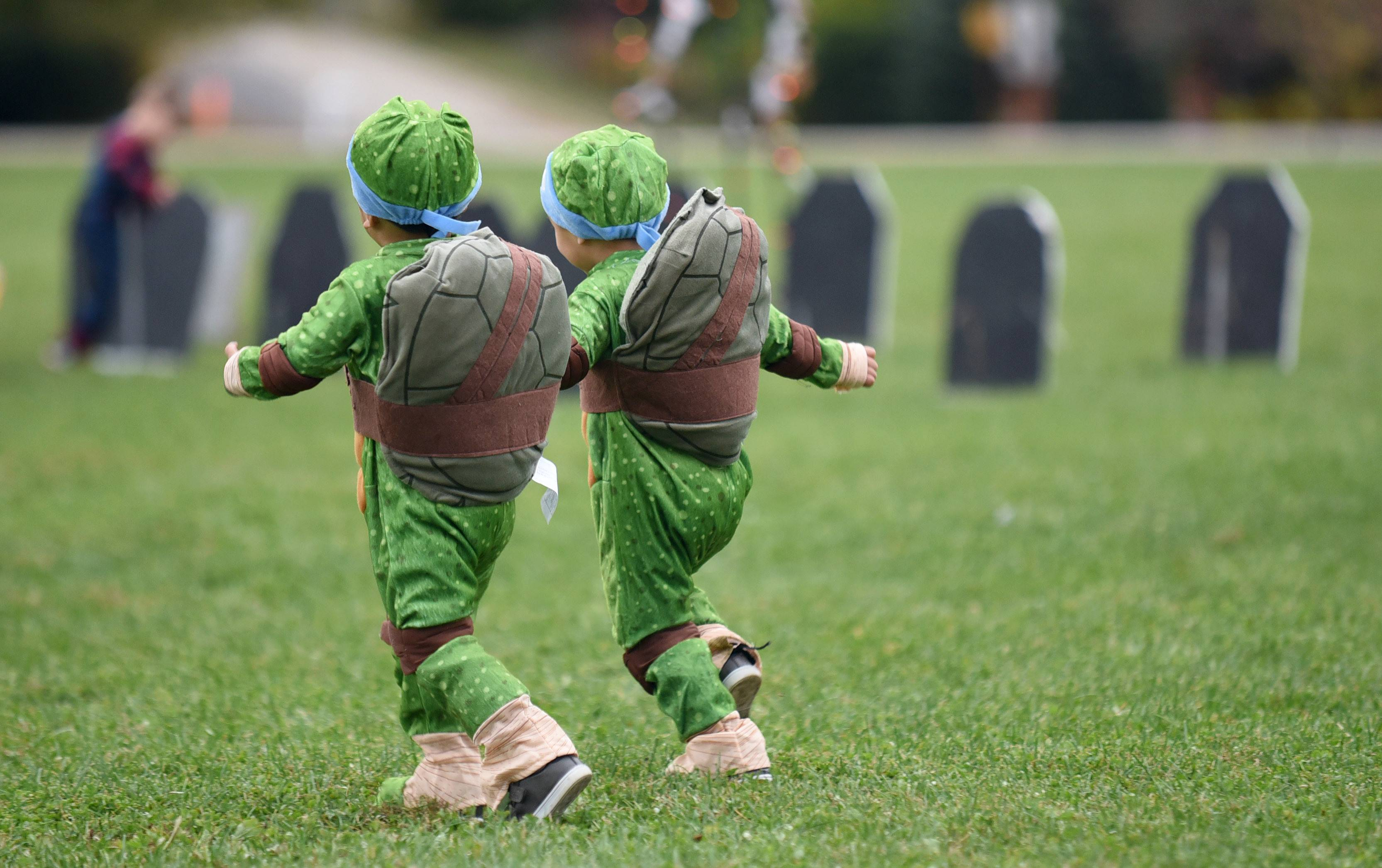 Twin brothers Liam, left, and Luca Rodriguez, 2, of Elgin runs together near a mock cemetery at the annual Halloween in the Hollow in Sleepy Hollow Saturday. The duo dressed as Teenage Mutant Ninja Turtles (their new favorite cartoon) for their first time attending the event.