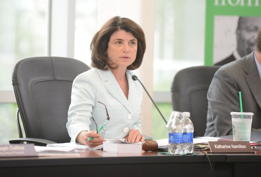 College of DuPage board President Kathy Hamilton said Thursday she thought it best that a search firm help the college find three new executives in addition to a new president.