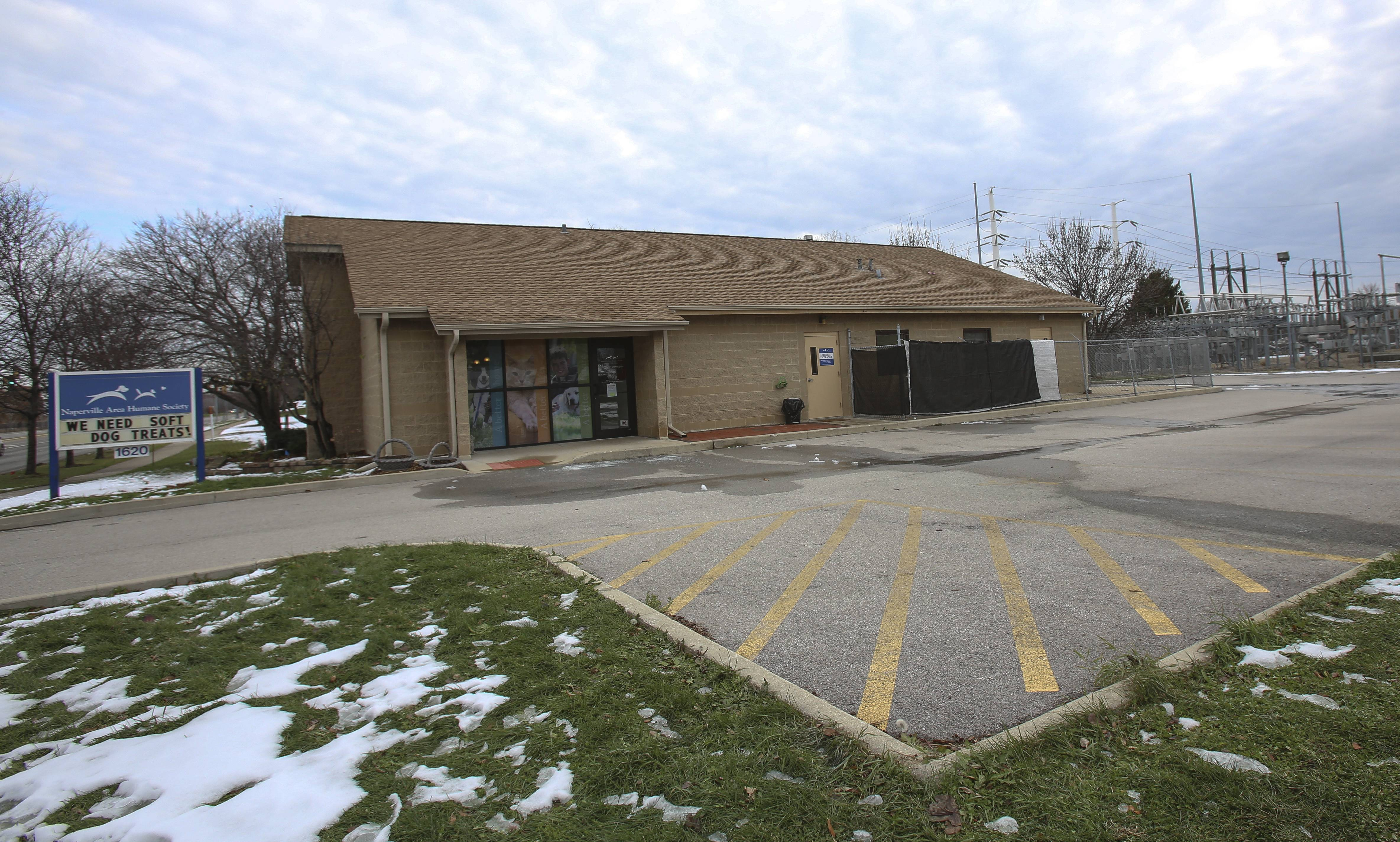 The area immediately west of the Naperville Area Humane Society on Diehl Road will be turned into outdoor dog runs and outdoor meet-and-greet rooms for people to play with adoptable pets. Work on the project is expected to begin next spring.