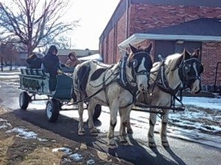 Horse-drawn wagon rides through Community Park are among the most popular activities at Addison Park District's annual Winterfest.