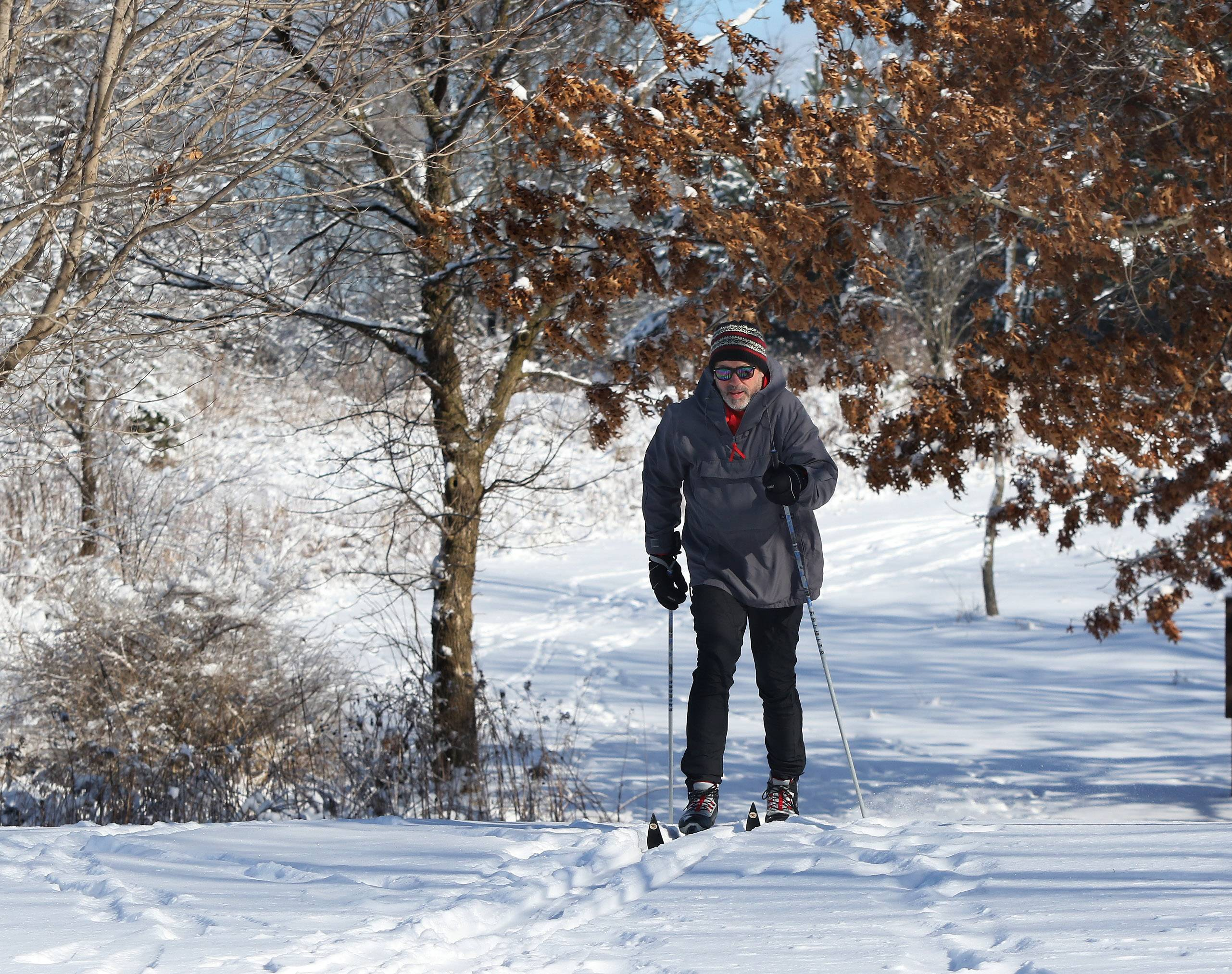 Garry Steffen of Lake Villa enjoys cross-country skiing during Winterfest at the Volo Bog State Natural Area on Sunday. The winter event featured tours of the bog, children's crafts, live music and a snow sculpting contest.
