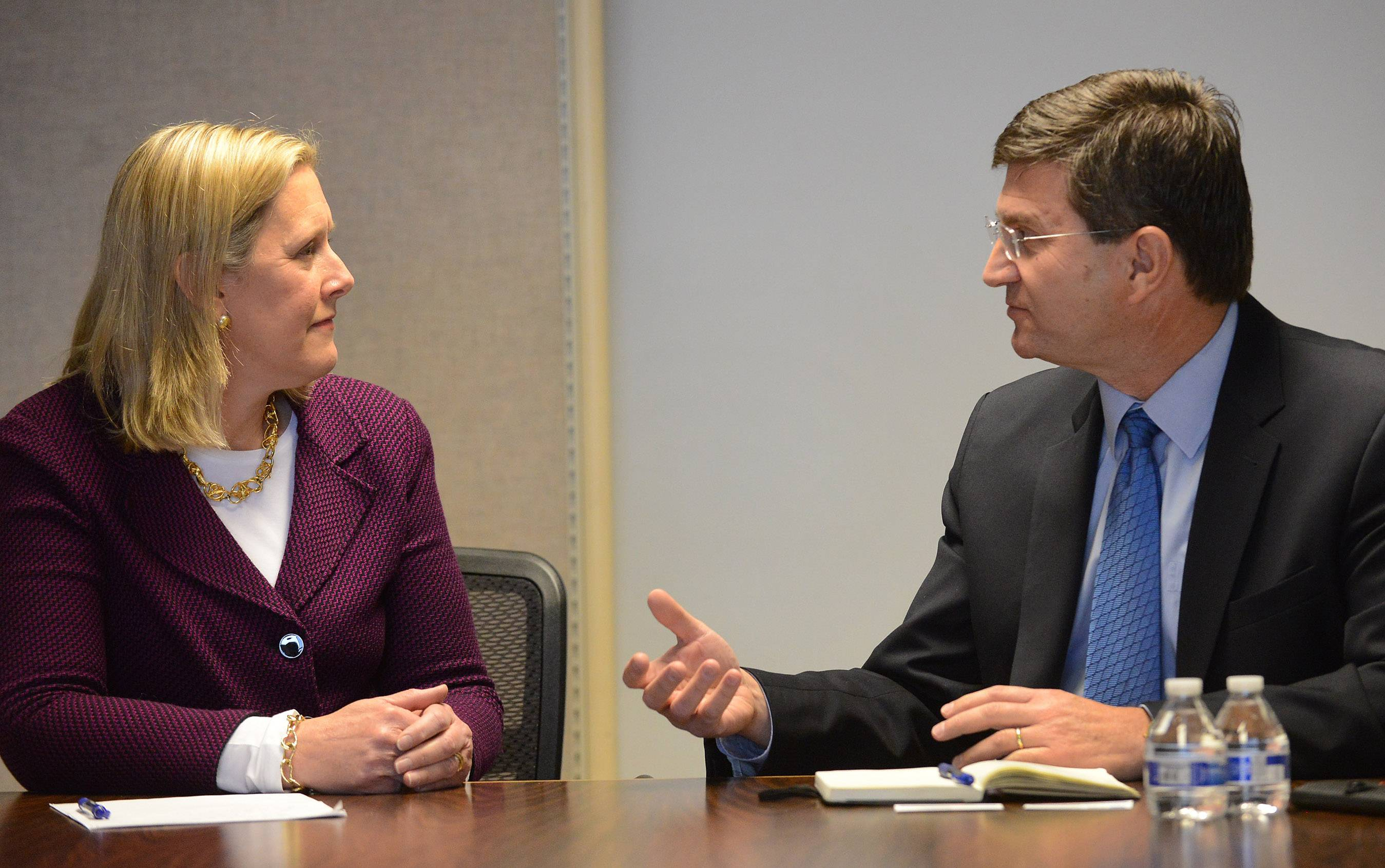 Democratic congressional candidates Nancy Rotering and Brad Schneider discussed gun control and other issues Wednesday with representatives of the Daily Herald Editorial Board.