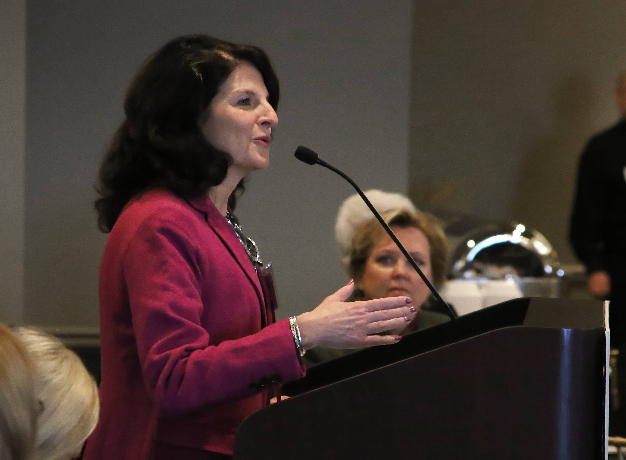Barrington Village President Karen Darch discusses the latest developments in the village during the Barrington Area Chamber of Commerce Economic Summit at the White House in Barrington on Wednesday.