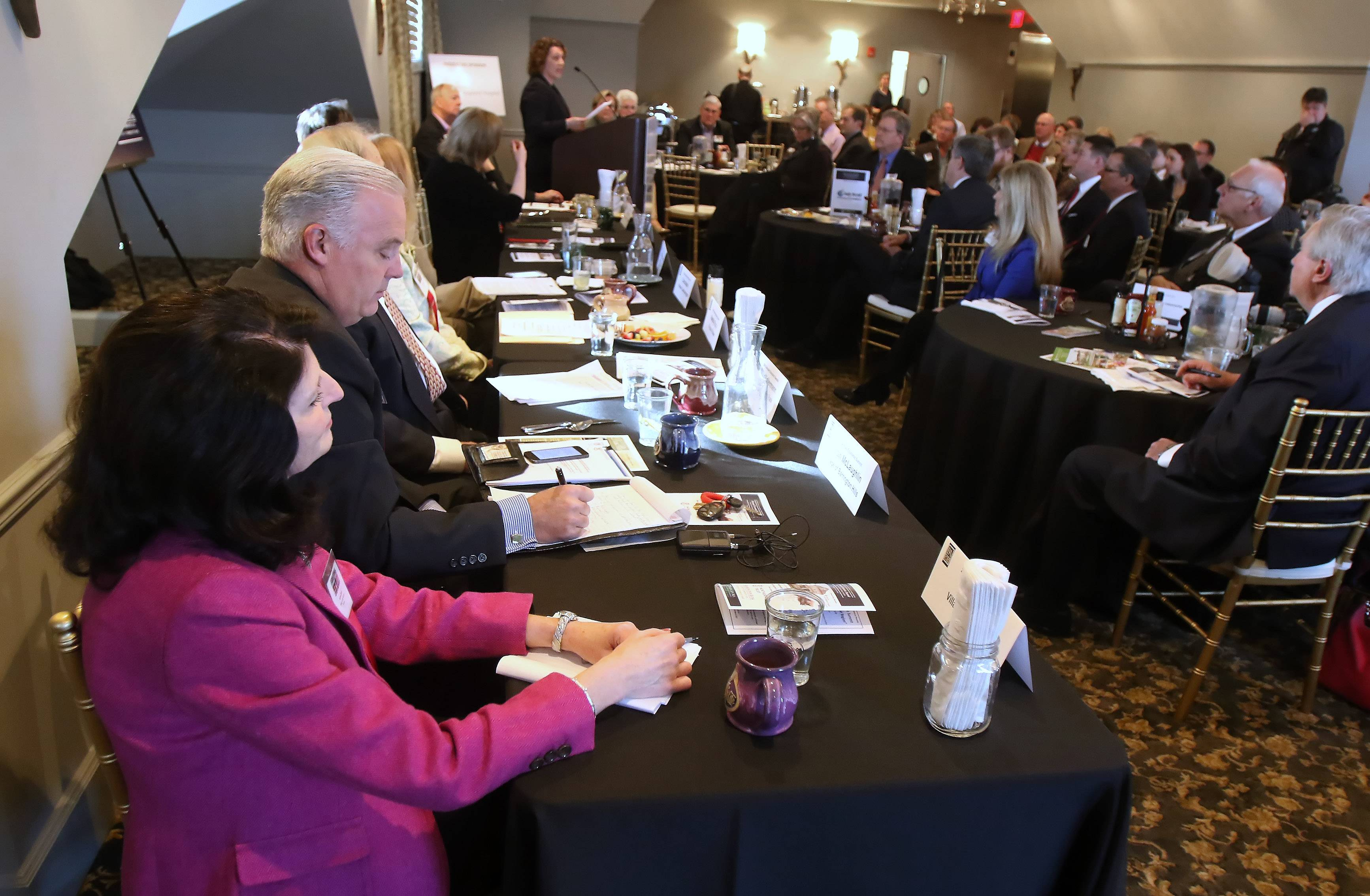 Long Grove Village President Angie Underwood talks to business leaders during the Barrington Area Chamber of Commerce Economic Summit at the White House in Barrington on Wednesday.