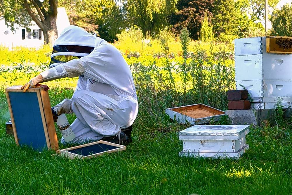 The backyard beekeeping classes at Heritage Prairie Farms will discuss the different types of hives with a hands-on demonstration of their components.