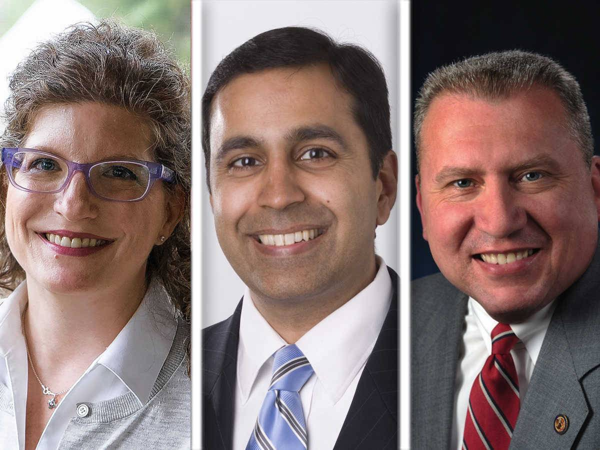 Deborah Bullwinkel, left, Raja Krishnamoorthi and Mike Noland are candidates in the 8th Congressional District.