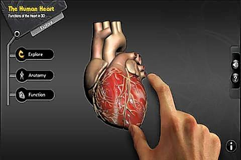 Explore the Heart in 3DCost: FreeAges: 4 and upThis 3D experience makes it easier to see and learn about the functions of the human heart. With the ability to zoom in and rotate the heart, this app gives your child an interactive learning experience.