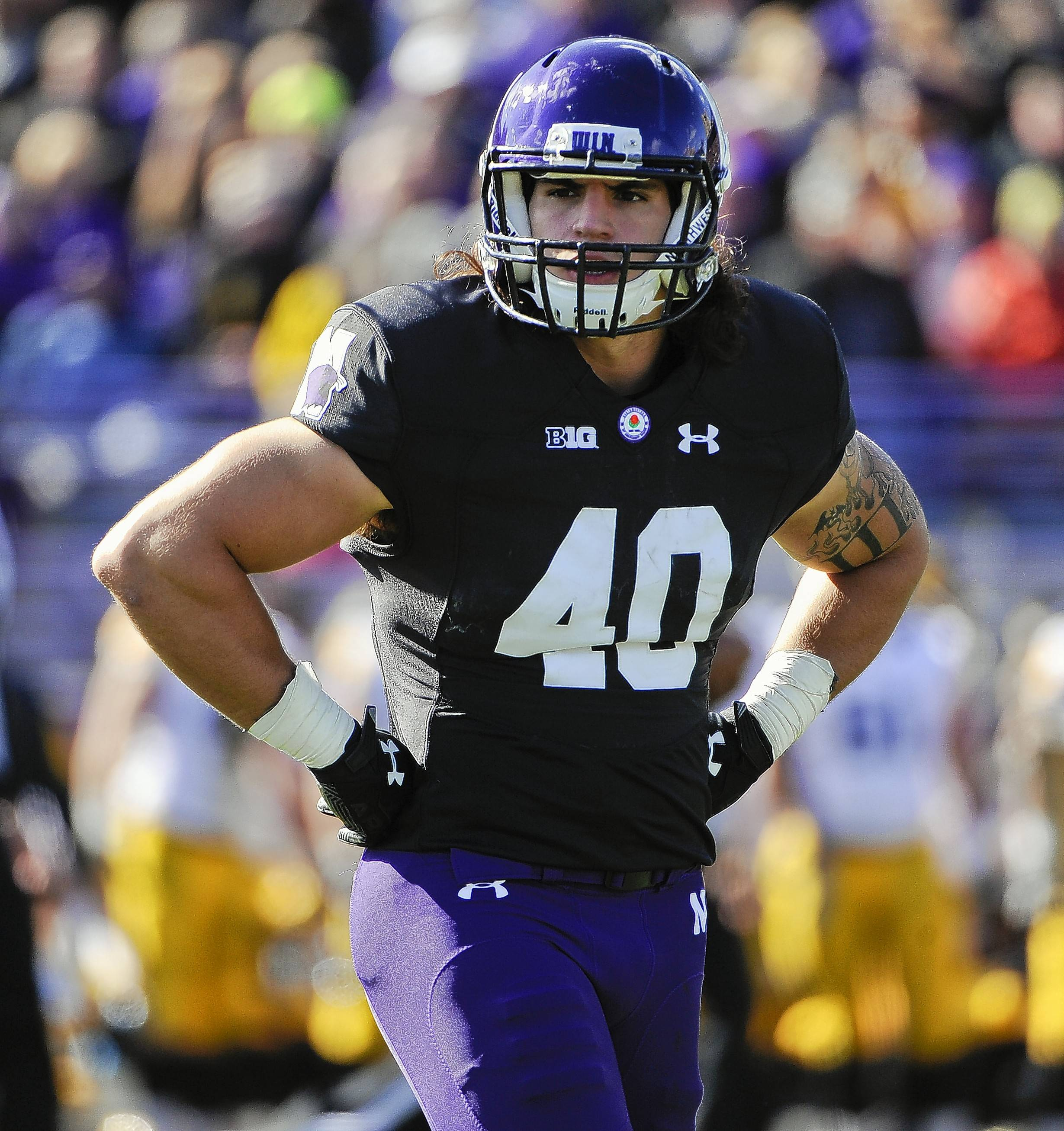Northwestern fullback Dan Vitale looks on during a game against Iowa on Oct. 17, 2015, in Evanston.