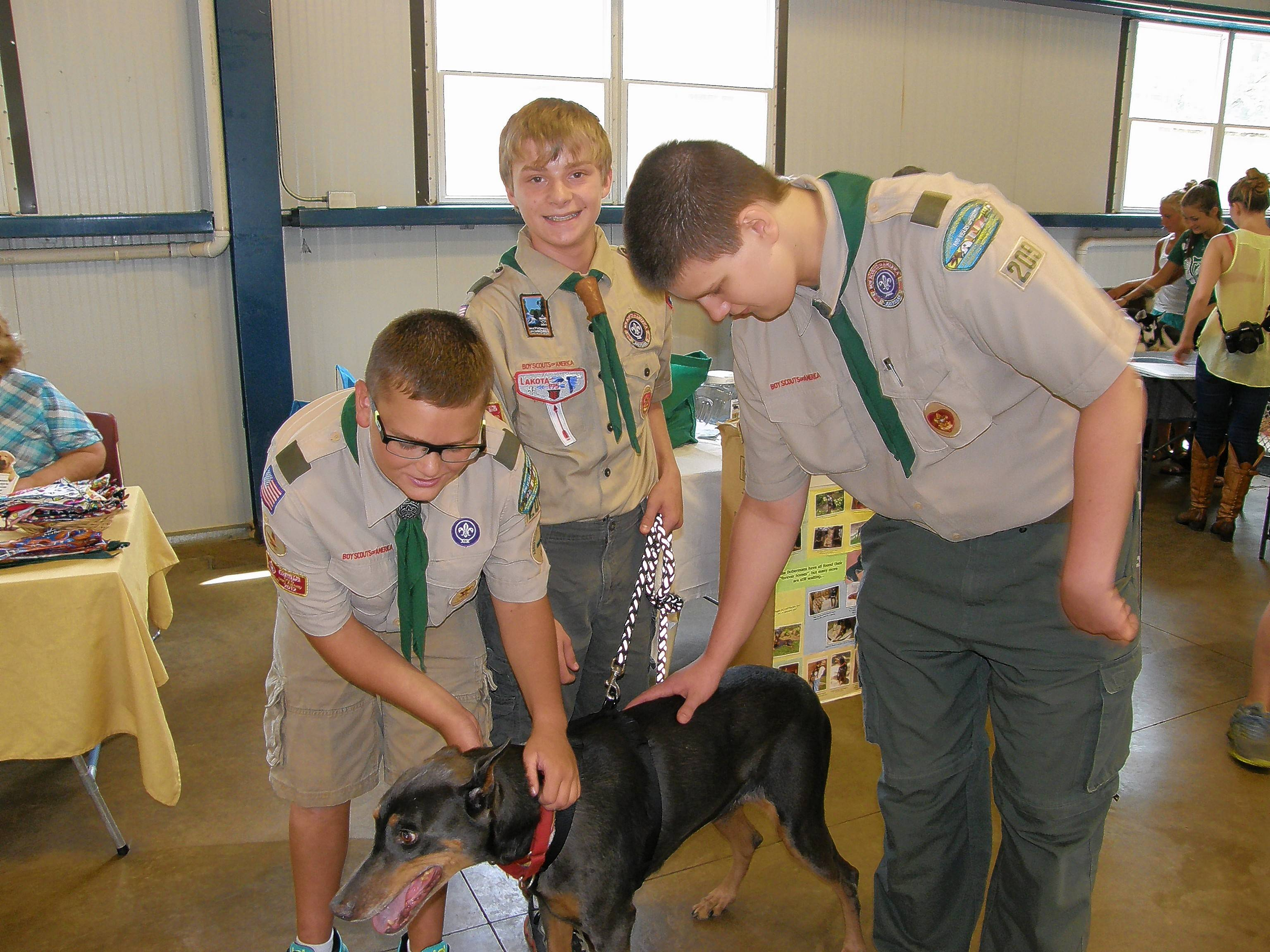 Tyler Matuszczak, center, and his fellow Boy Scouts visit with the dogs at Illinois Doberman Rescue Plus. Matuszczak chose to help the Barrington-based nonprofit animal rescue for his Eagle Scout project.