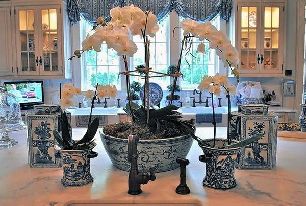When Paired With Traditional Interiors Blue And White Accessories Make The Feel Rich