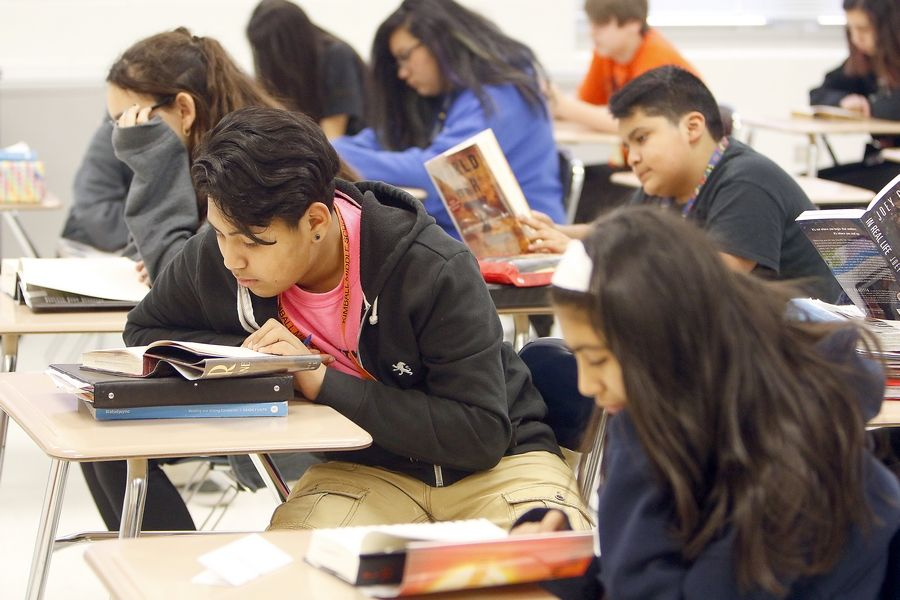 Angel Bahena, 13, reads during his seventh-grade gifted class this month at Kimball Middle School in Elgin. A new report suggests the representation of black, Latino, low-income and other underserved populations in gifted programs statewide is woefully lacking.