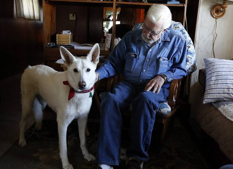 Clem Schultz survived the April 9, 2015, tornado that struck Fairdale, but his wife did not. Missy, the couple's white shepherd, went missing for two days. - Brian Hill | Staff Photographer