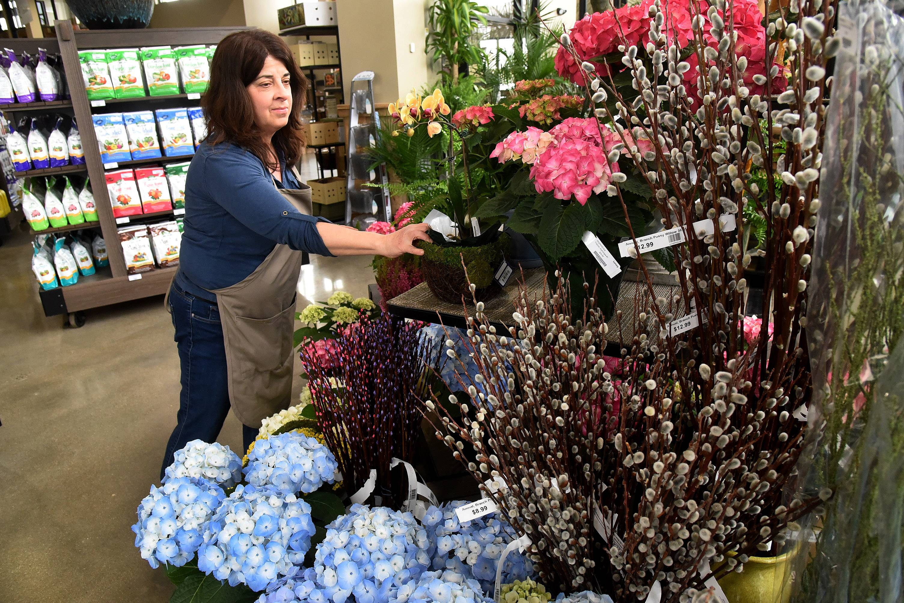 Judy Ronan works on some indoor blooming plants in the conservatory area of the new Lurvey Landscape Supply and Plant Center in Des Plaines.