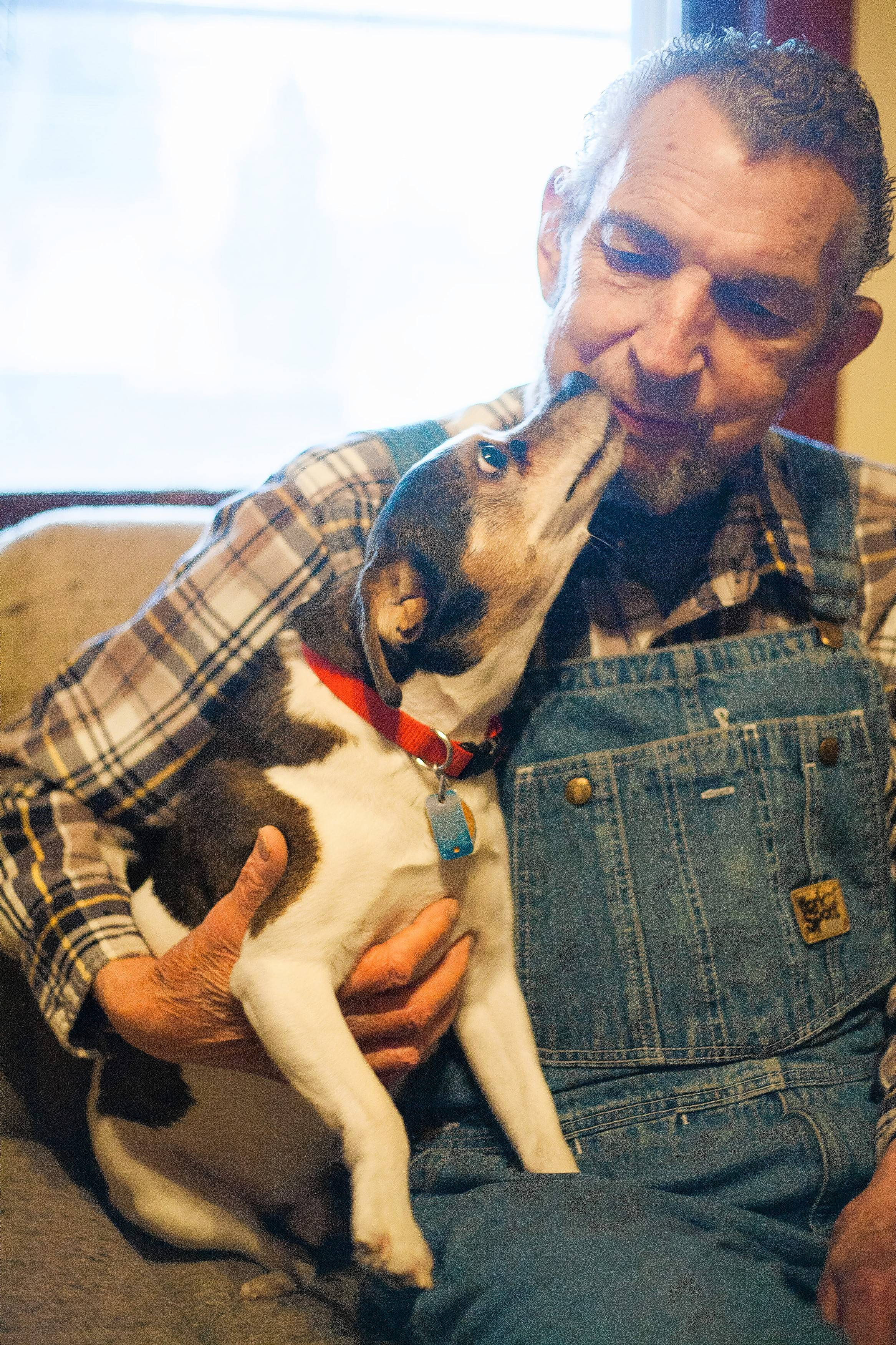 Glen Hall of Elgin says his dog Eddy is fed through the Salvation Army Golden Diners program, which is funded by RunFurShelter in South Elgin.