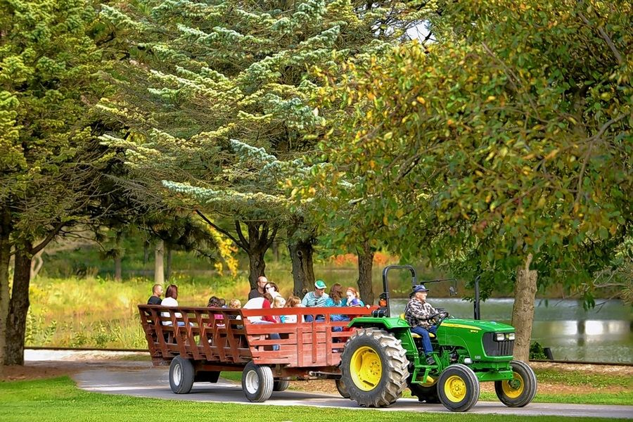 Hay wagon rides and train tours are just two of the many attractions that bring families to visit historic Blackberry Farm in Aurora, which opens for the season on May 1.