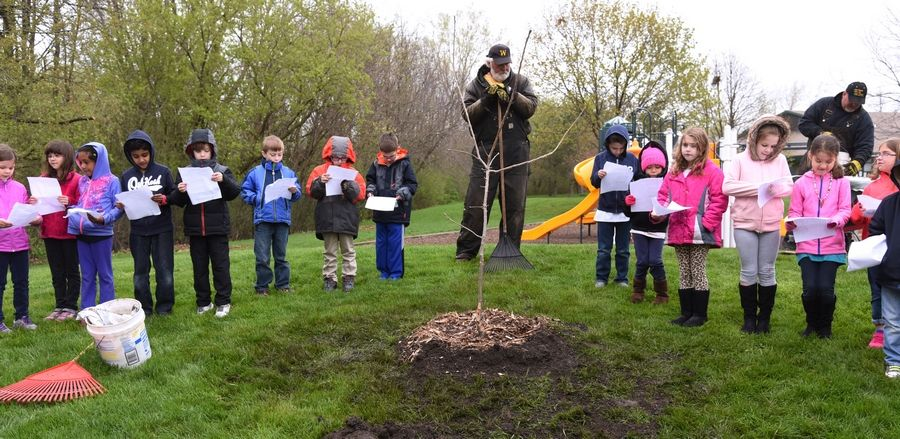Paul Valade/pvalade@dailyherald.comGrayslake Community Park District employee Wally Grandt, center, watches over the newly-planted white oak tree Friday at Meadowview School in Grayslake. First grade students sing a tree-themed song in celebration of Arbor Day before heading back to class.