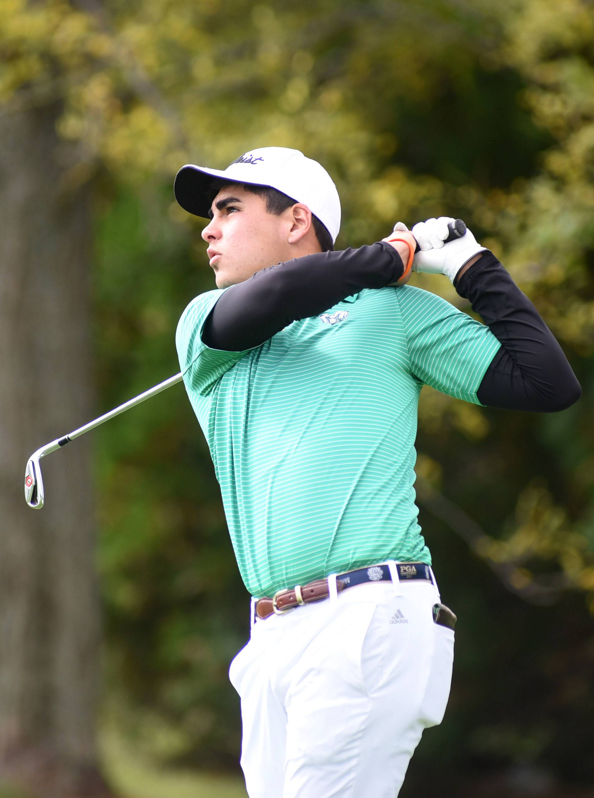 Grayslake Central's Kyle Reynolds tees off at the 15th hole at the Fox Valley Conference in Crystal Lake last fall.