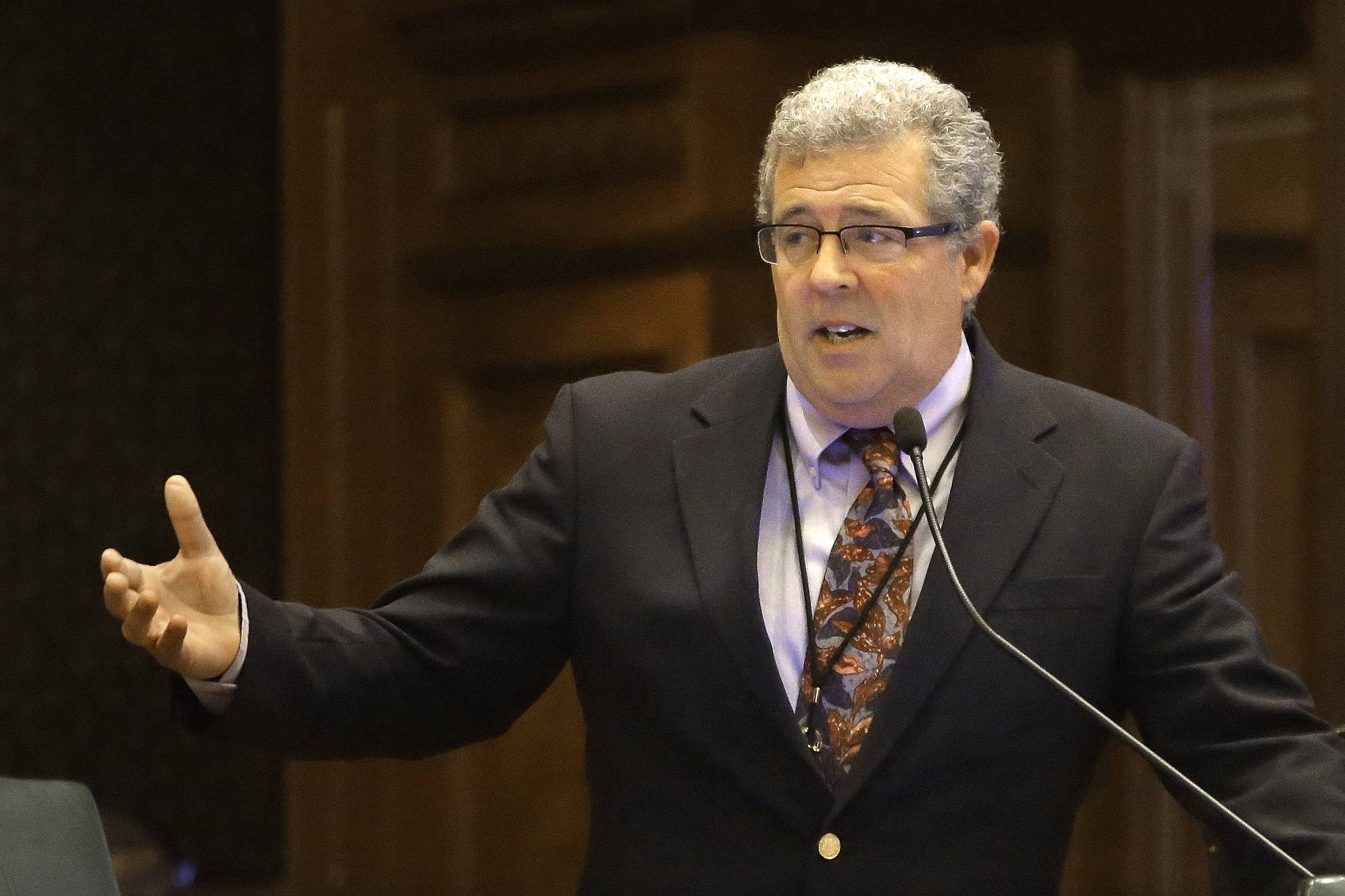 Illinois Auditor General Frank Mautino, a Spring Valley Democrat, was appointed to the post last year after being a longtime lawmaker.