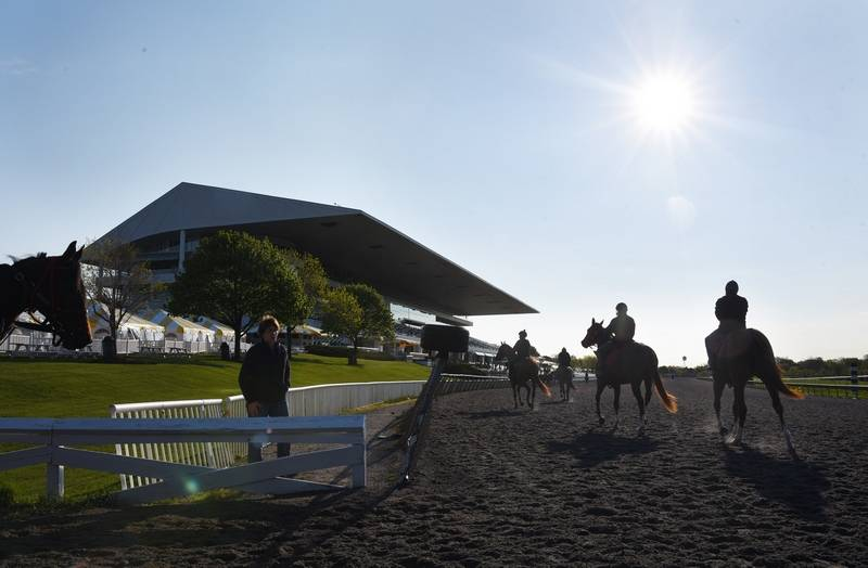 Horses Enter The Track For Morning Workout At Arlington Park Thursday In Preparation Opening
